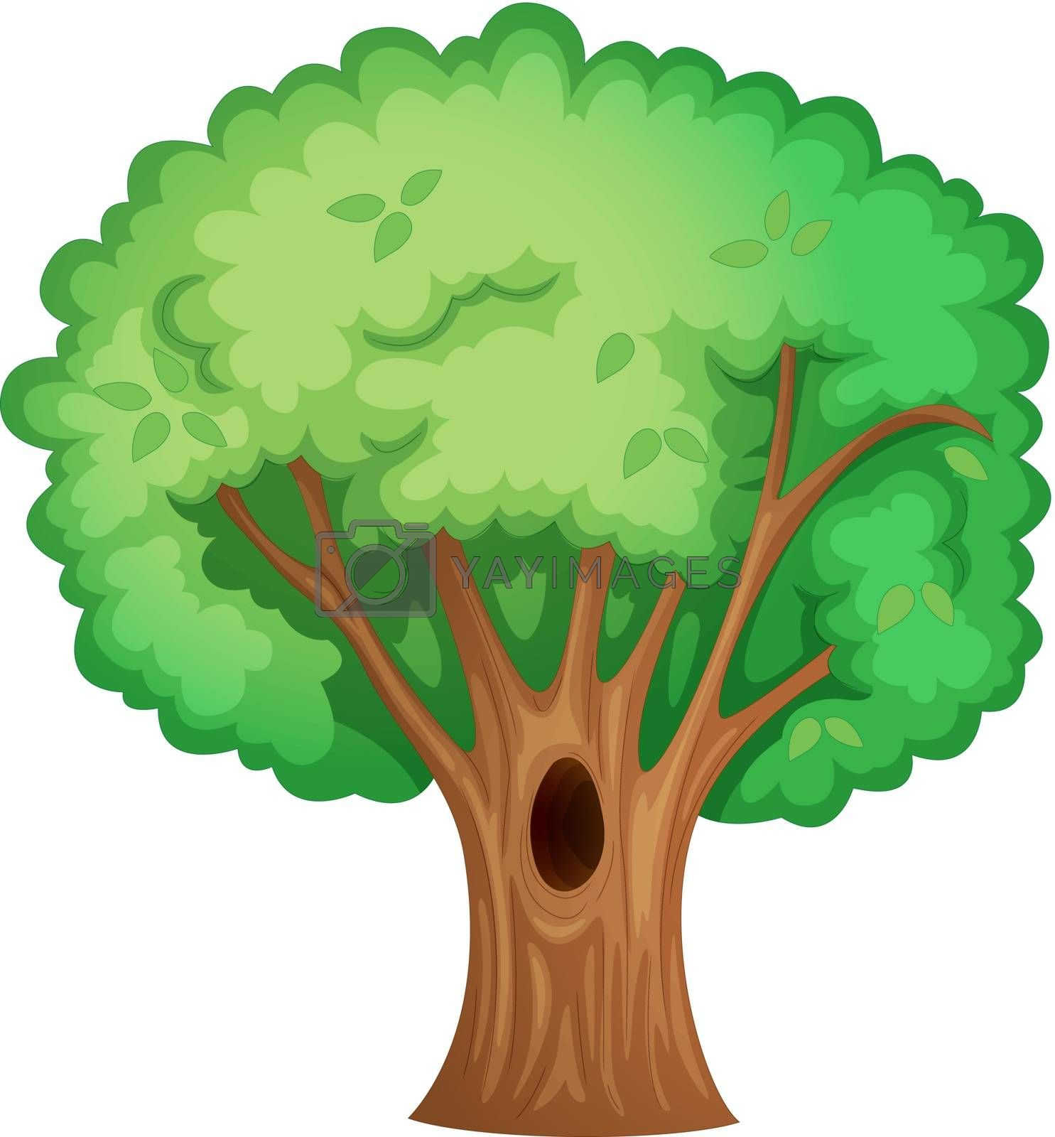 Illustration of isolated tree with hollow