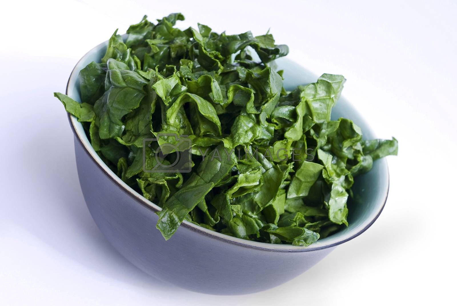 fresh spinach in a nice bowl on white background