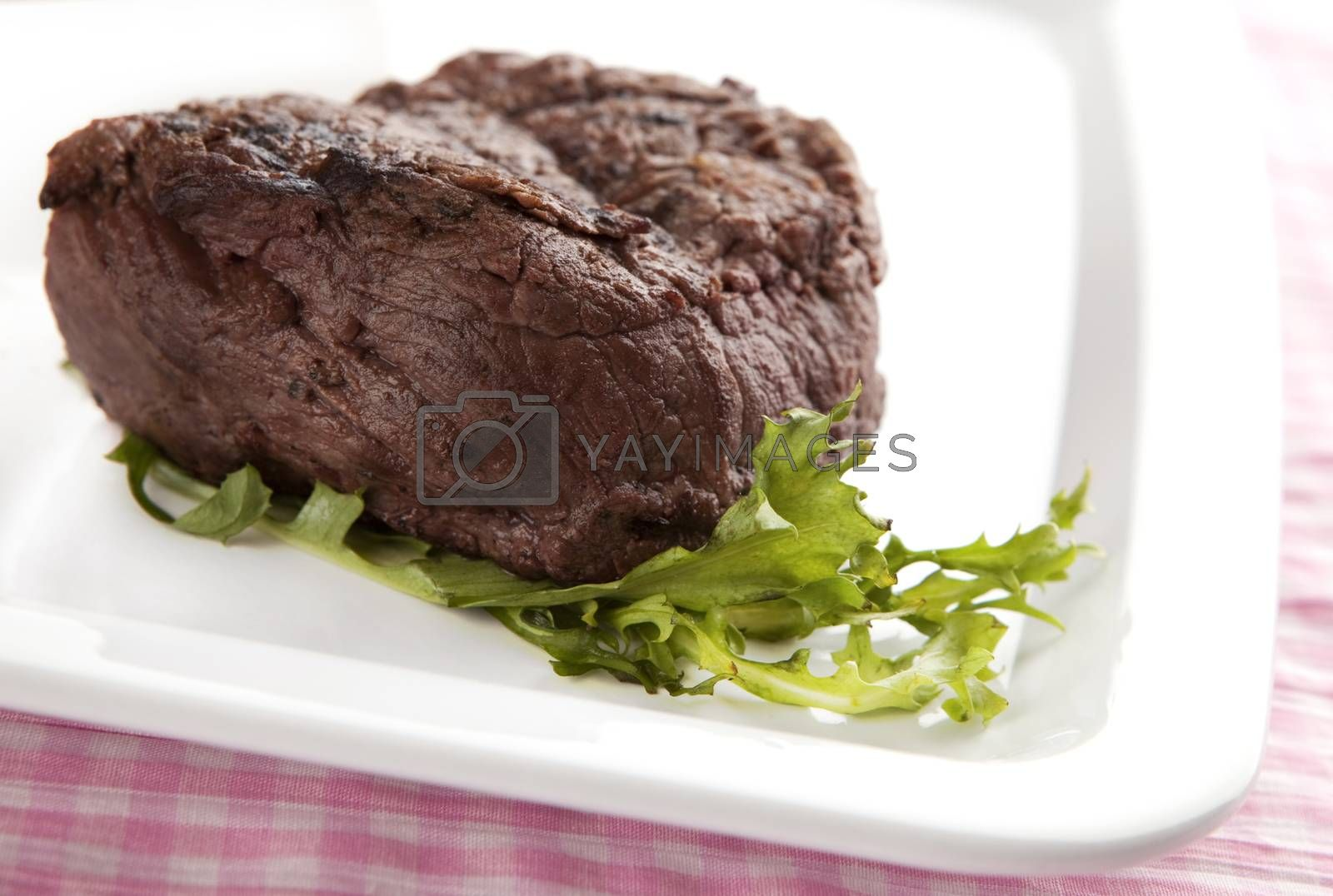 big steak on a plate with salad