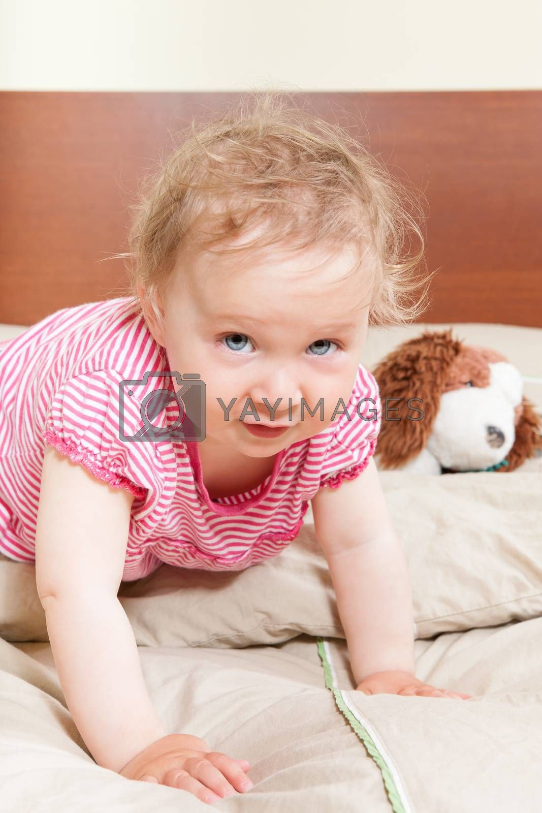 Cute adorable 12 month old baby girl with big blue eyes on bed with her favorite toy looking into camera.
