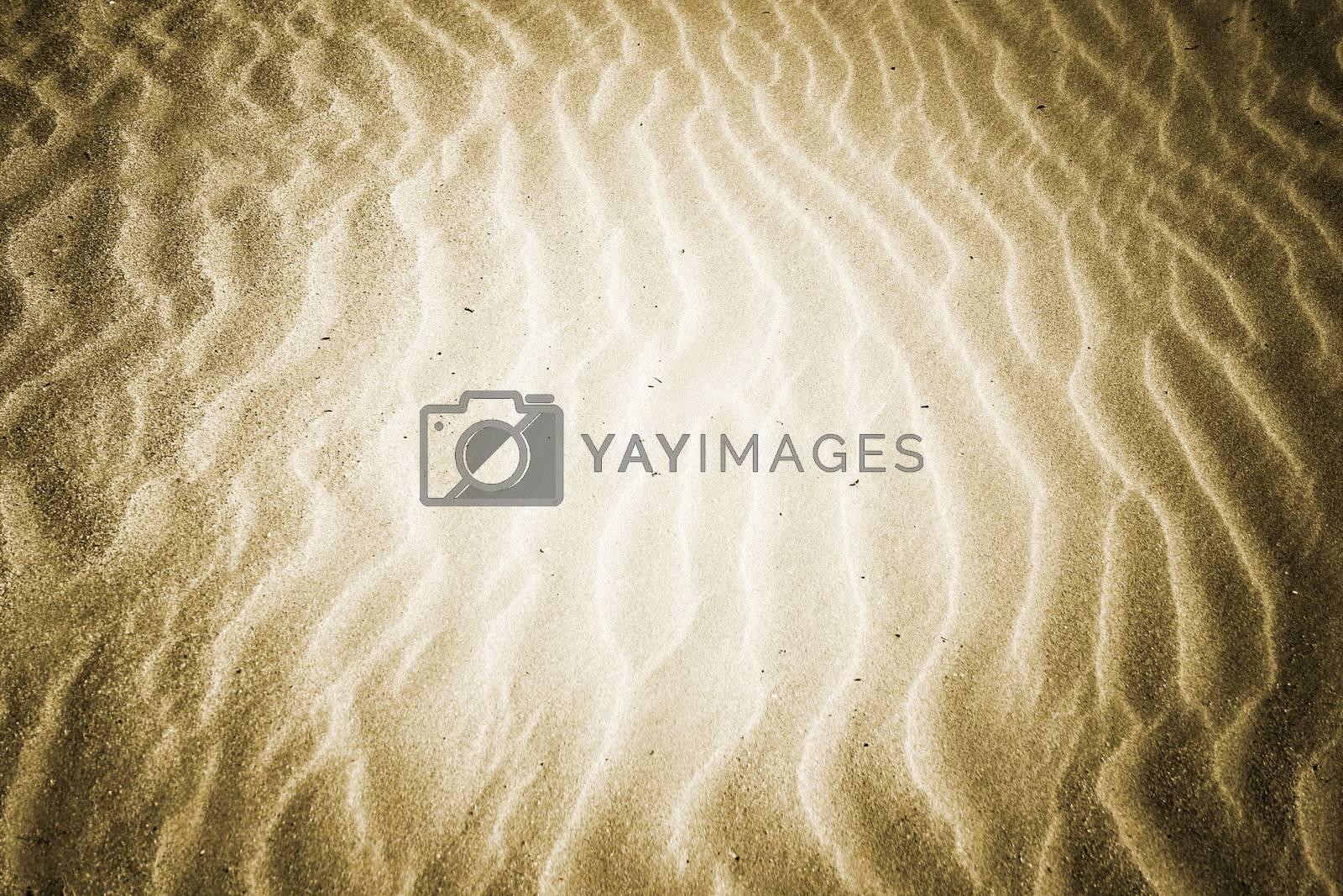 Beach with soft sand by arosoft