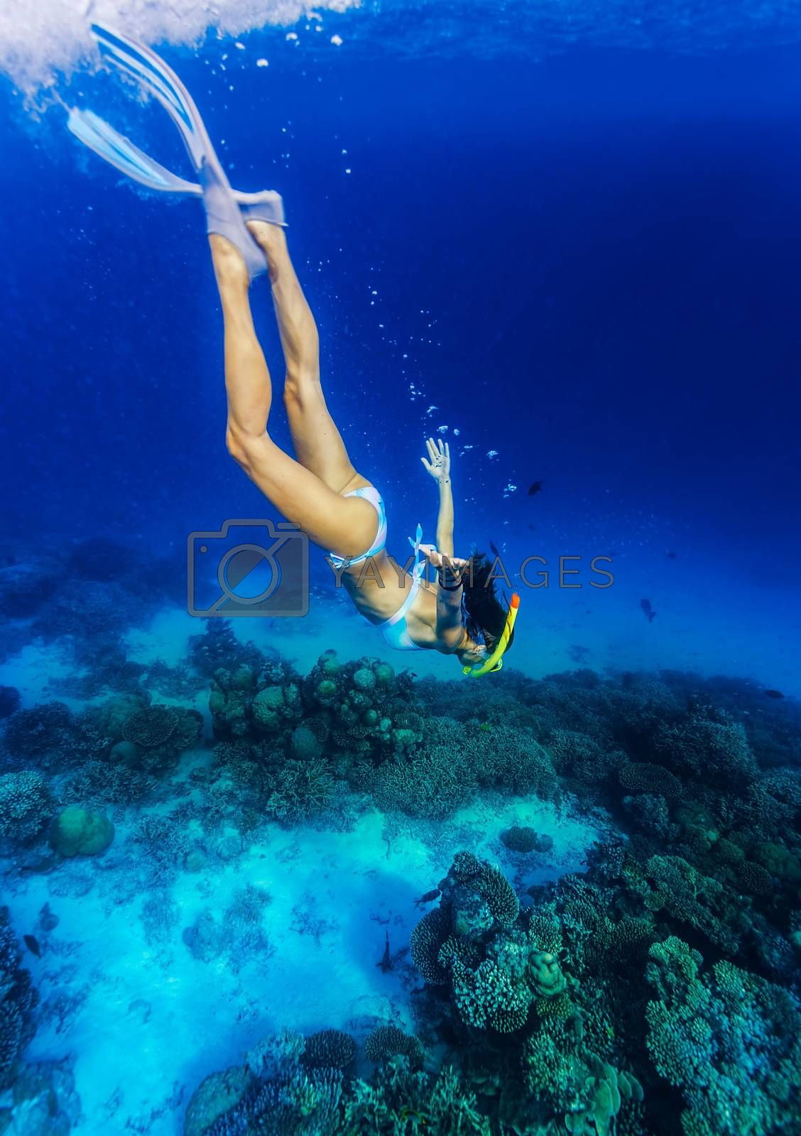 Royalty free image of Woman diving to the sea bottom by Anna_Omelchenko