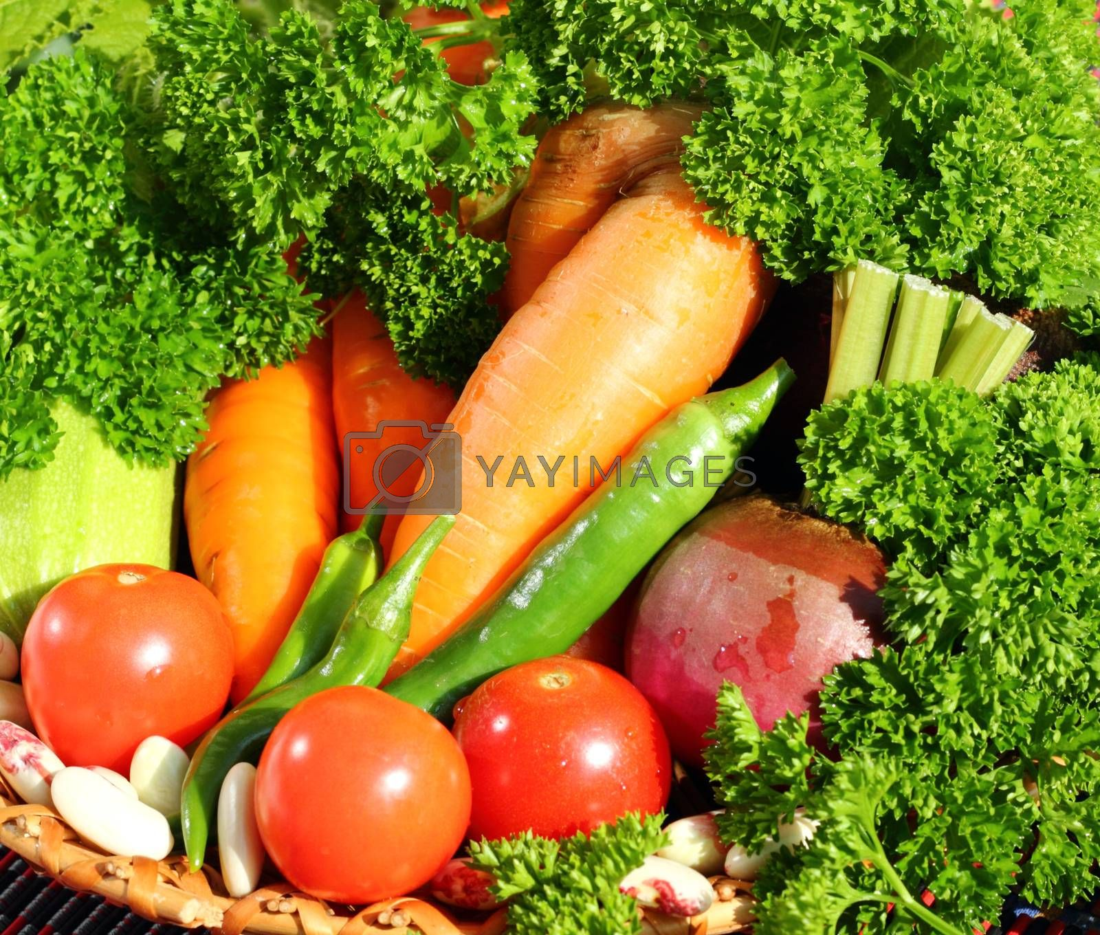 Royalty free image of Fresh vegetables  by openas