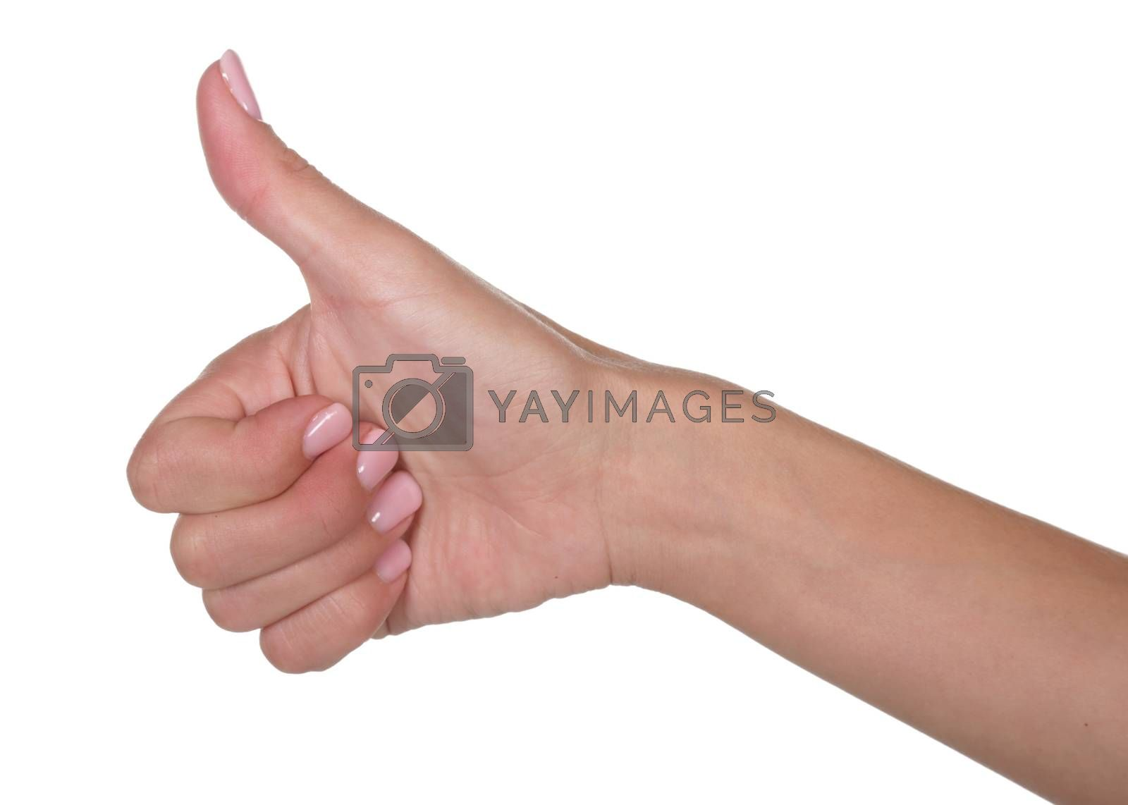 Royalty free image of Thumbs Up Positive Sign by fouroaks