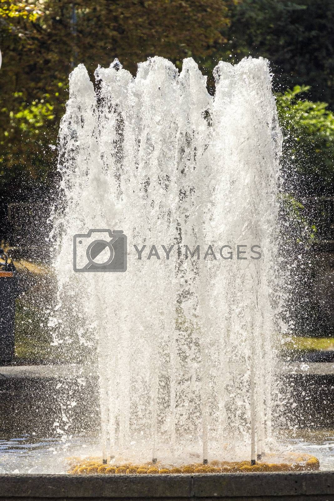 Royalty free image of detail of water fountain by meinzahn