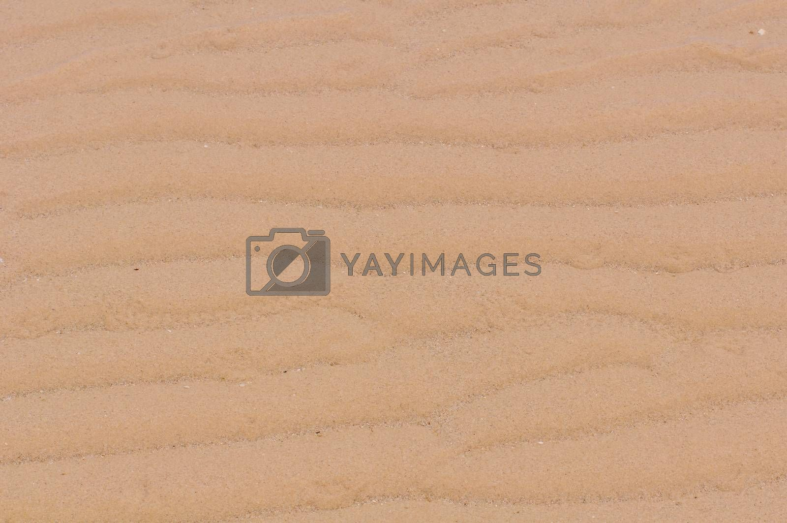 Royalty free image of The beach sand background by Sorapop