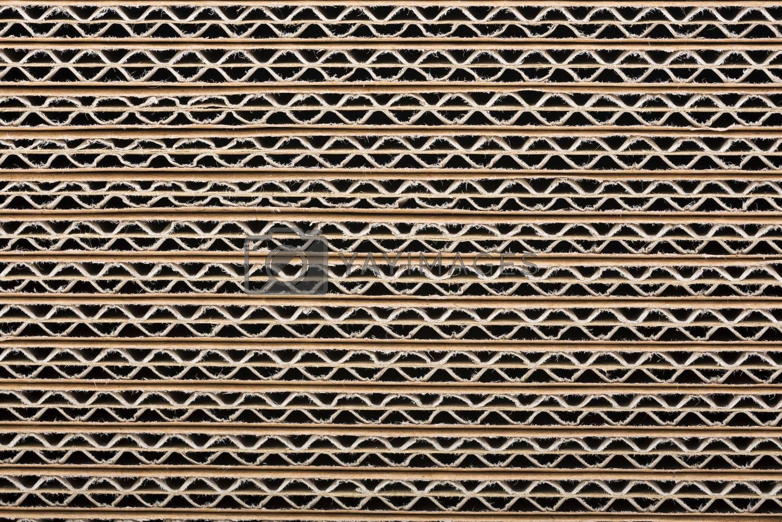 Royalty free image of Cardboard background by johan10