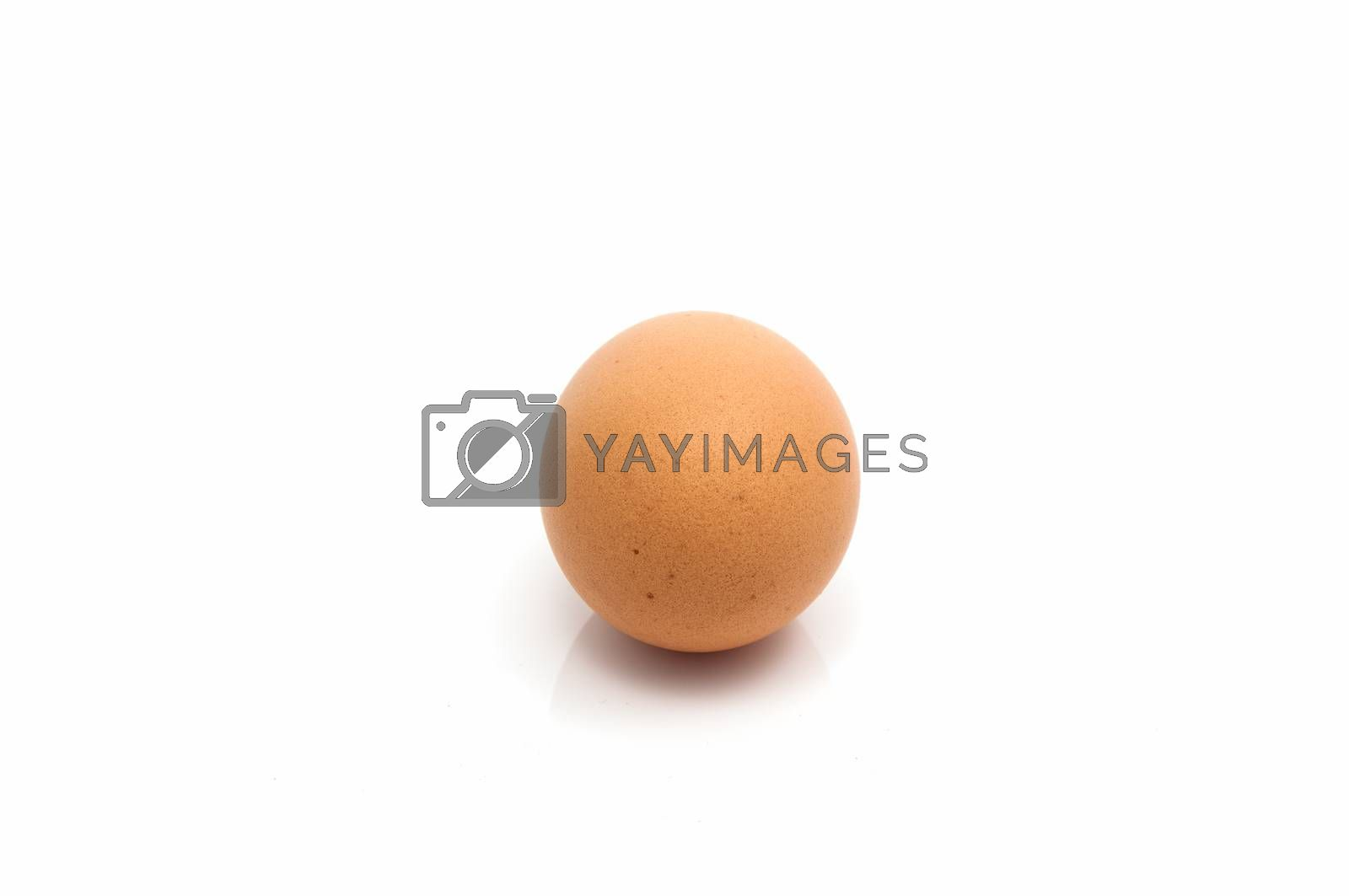 Royalty free image of Close up of an egg isolated by Sorapop