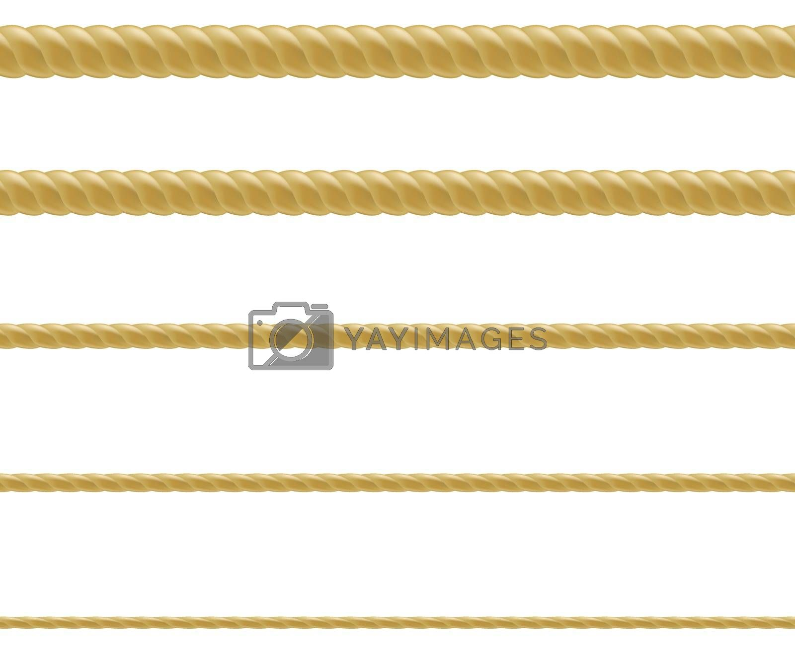 Royalty free image of Rope Set by cammep