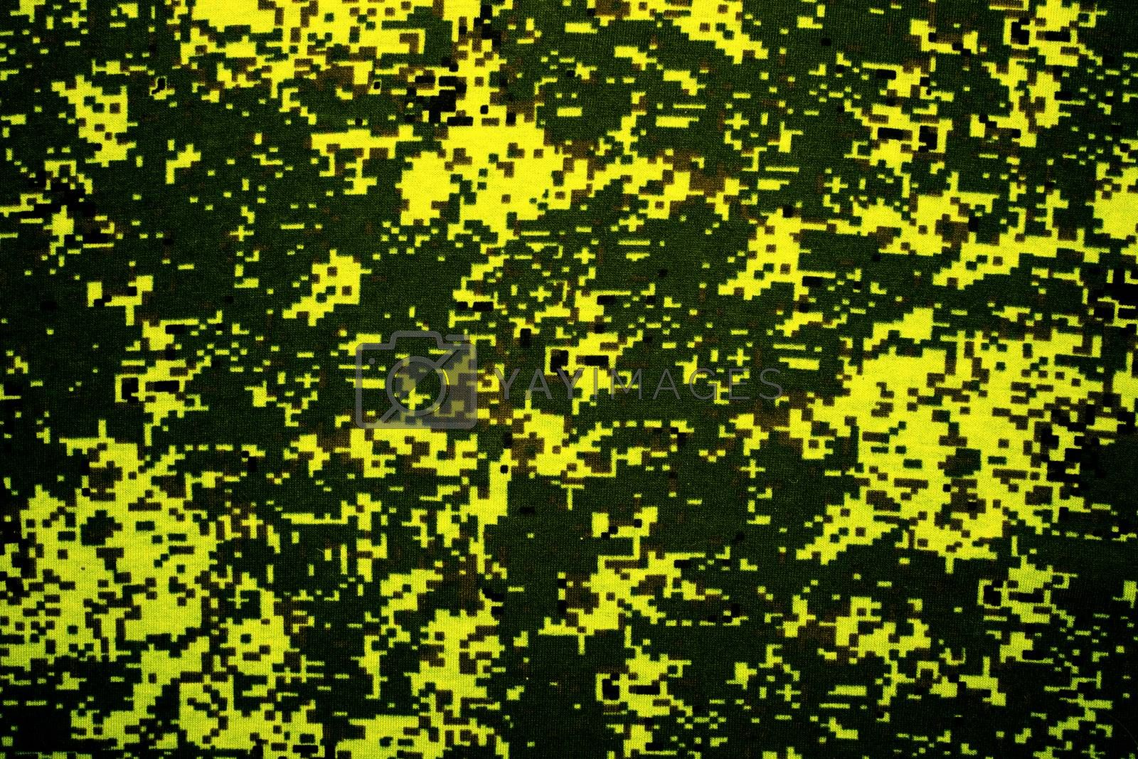 Royalty free image of Camouflage by begun1983
