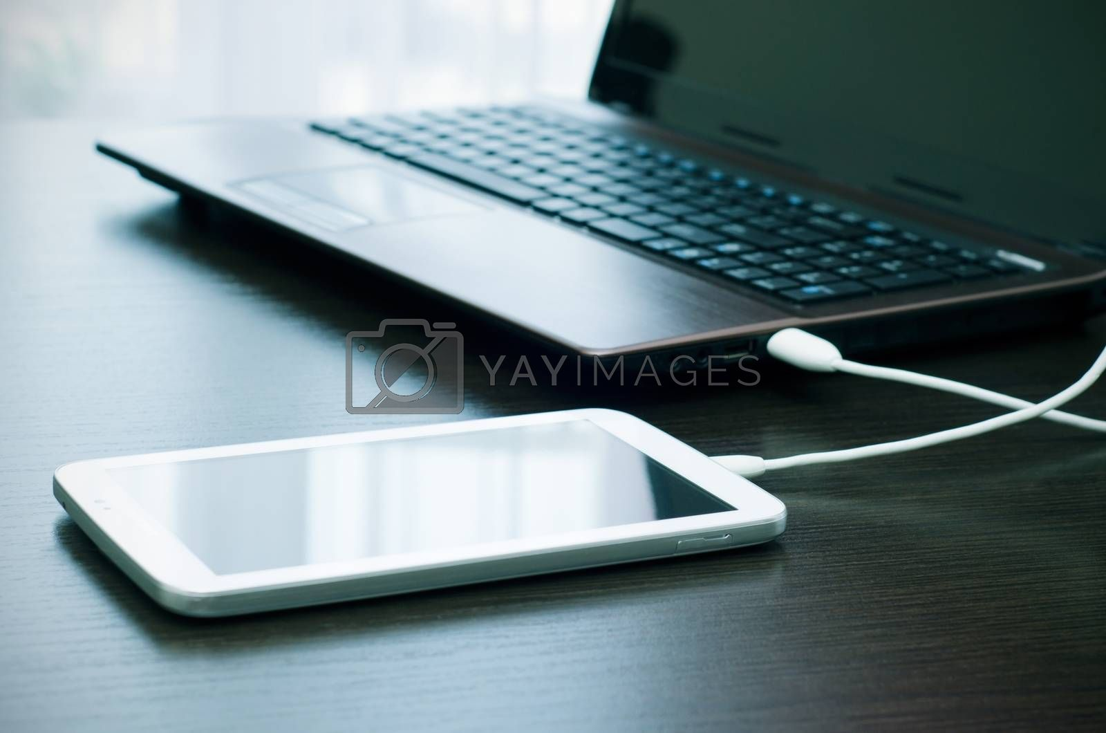 Royalty free image of Laptop and tablet data transfer with USB connection by simpson33