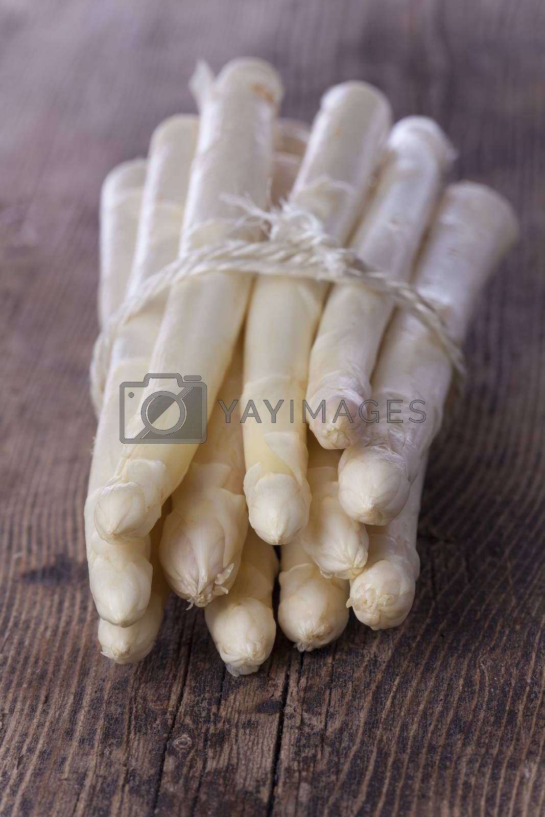 Royalty free image of raw white asparagus  by bernjuer