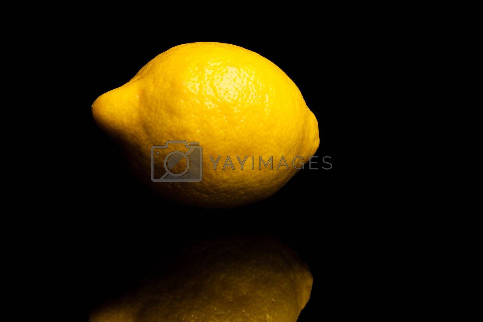 Royalty free image of Lemon by furo_felix