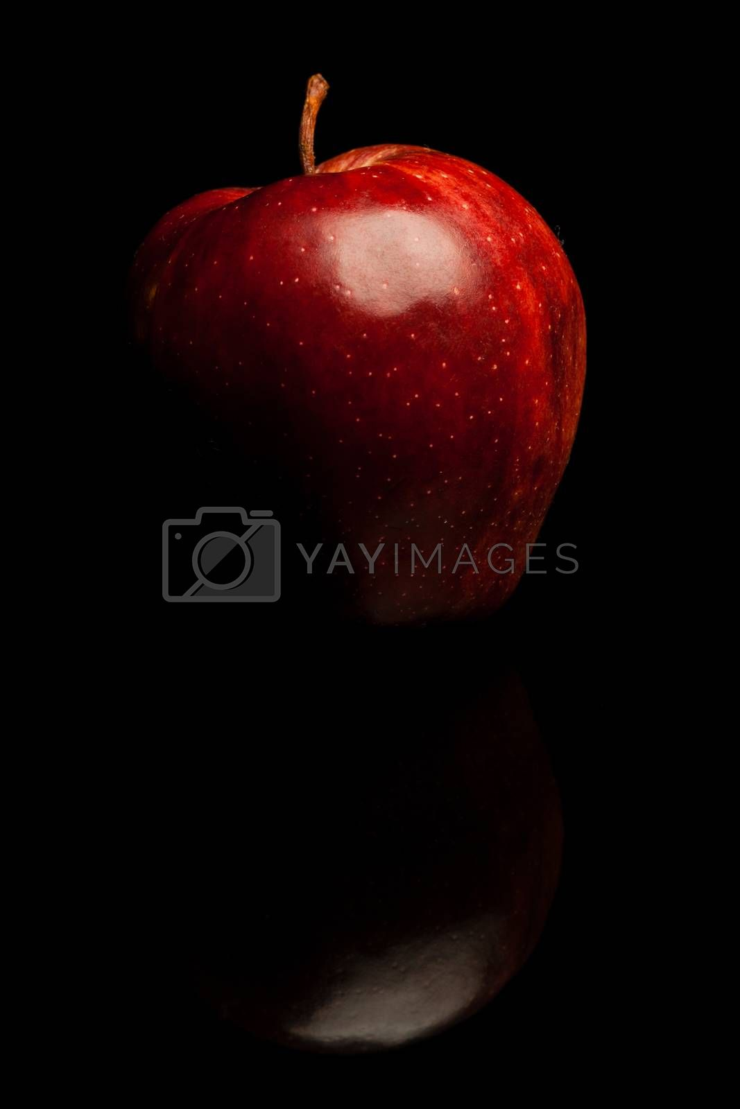 Royalty free image of apple by furo_felix