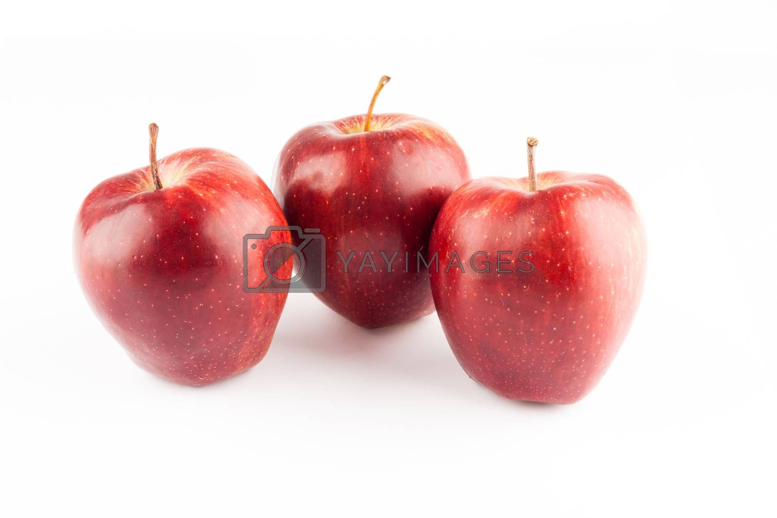 Royalty free image of apples by furo_felix