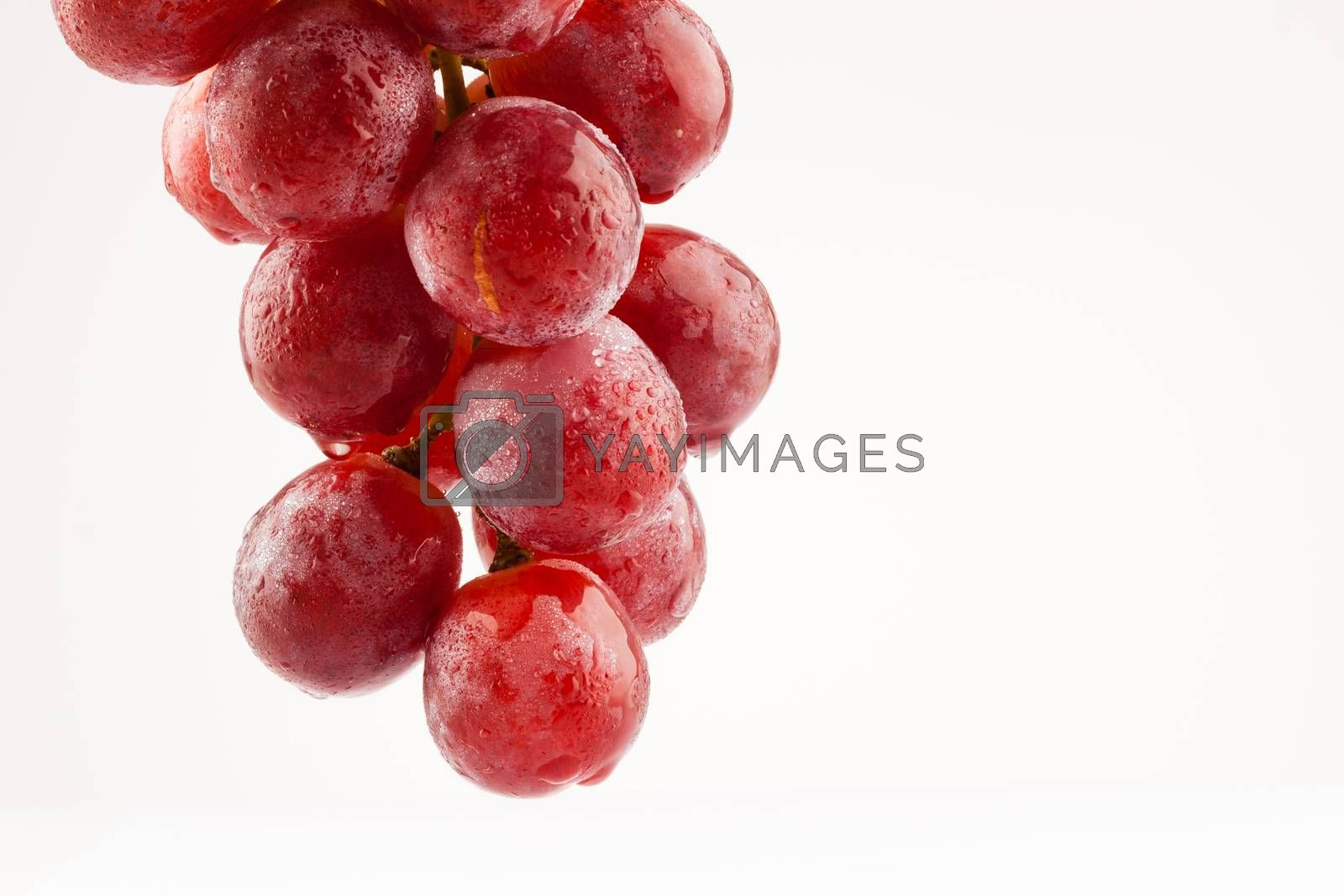 Royalty free image of grapes by furo_felix