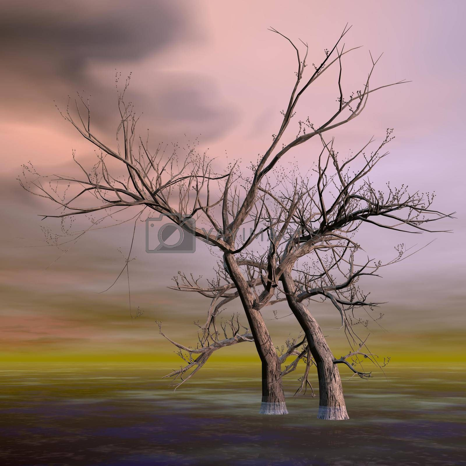 Royalty free image of Fantasy trees - 3D render by Elenaphotos21