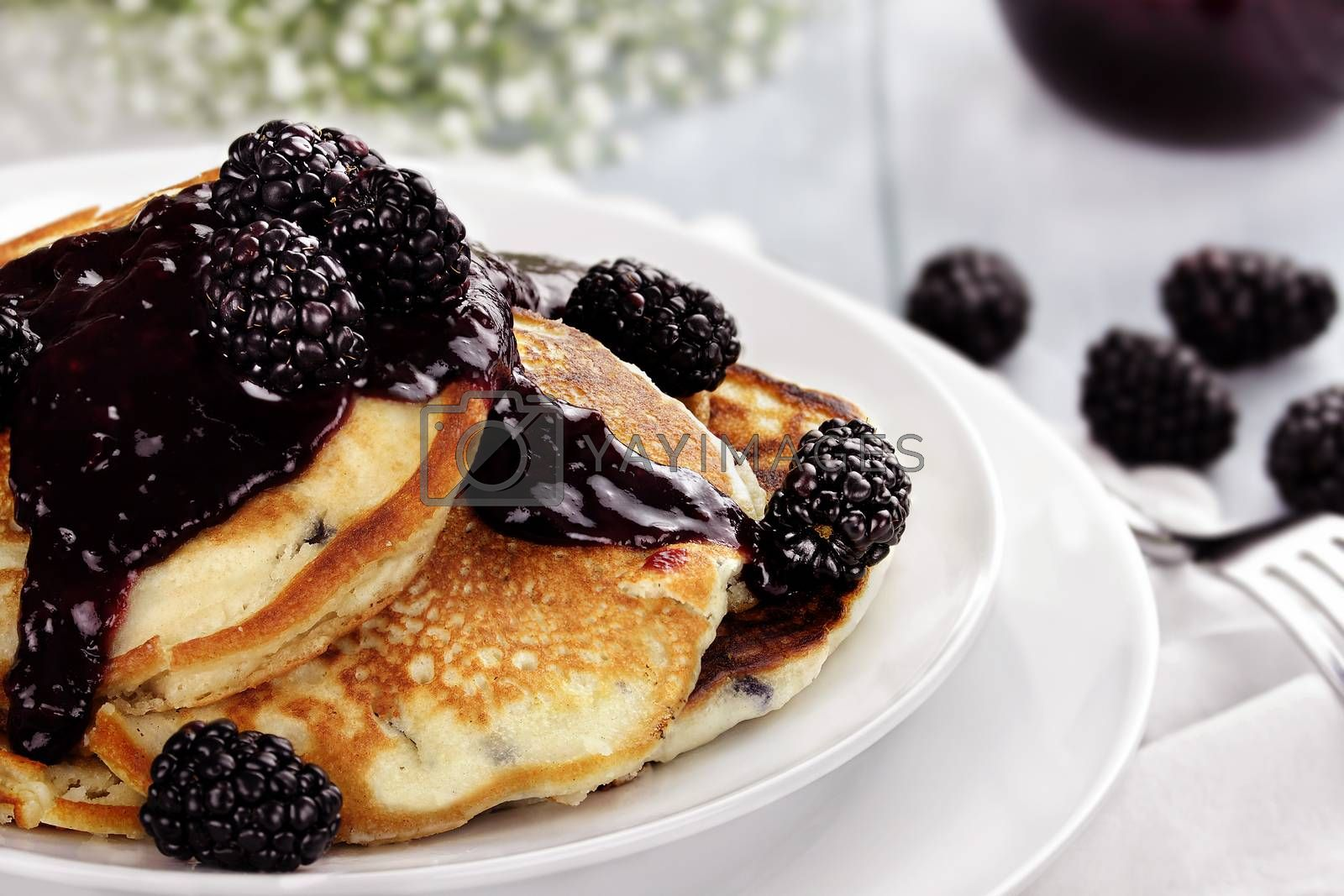 Royalty free image of Pancakes and Blackberries by StephanieFrey