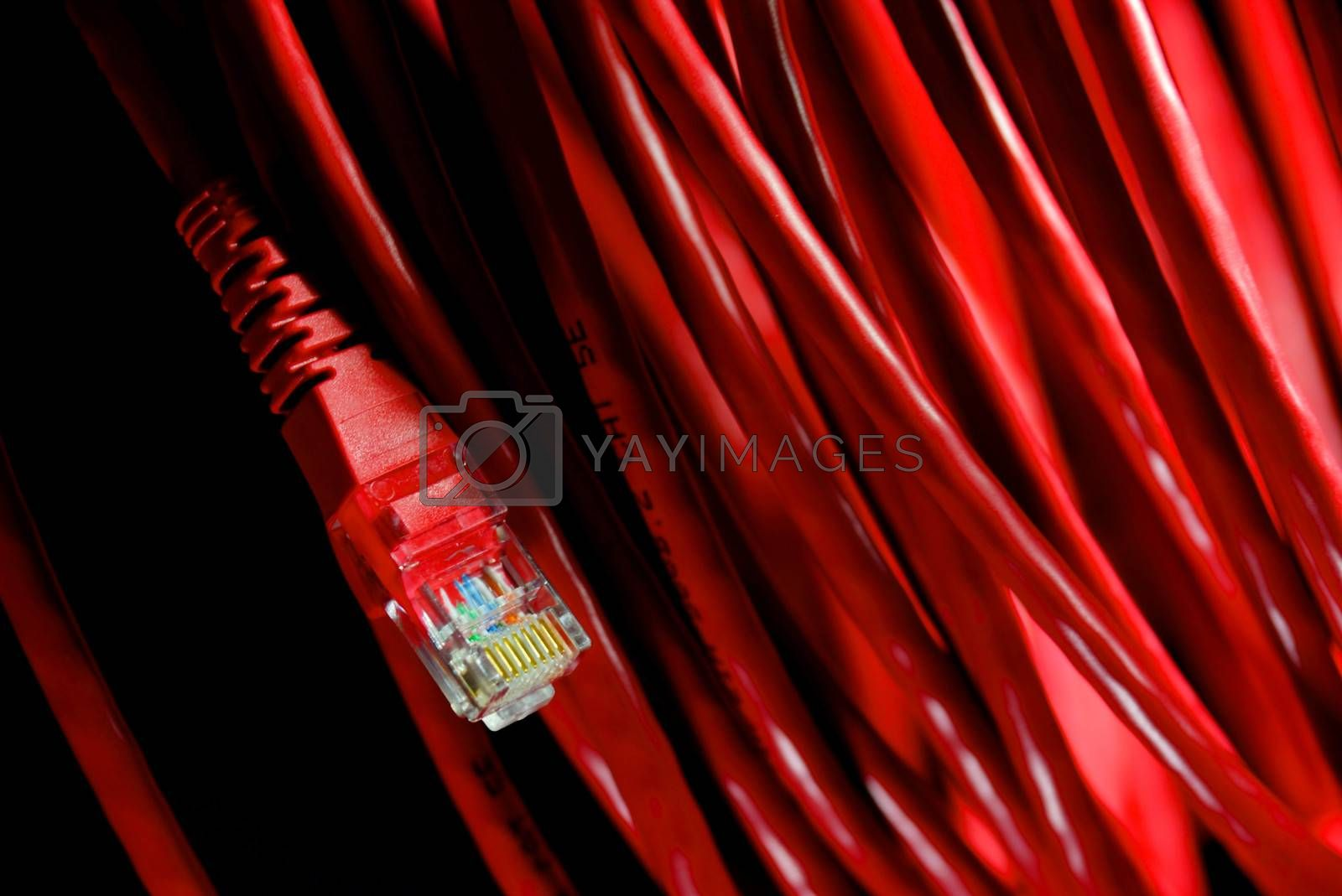 Royalty free image of cable and wire 29 by nattapatt