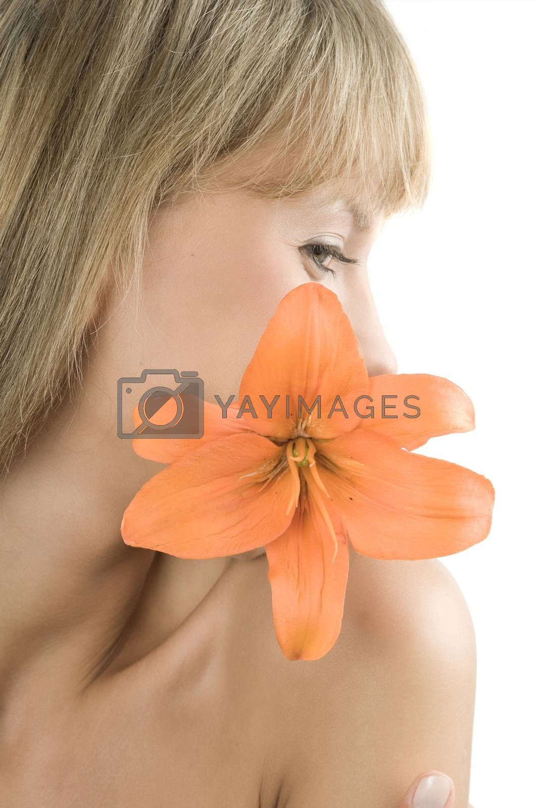 Royalty free image of orange lily by fotoCD