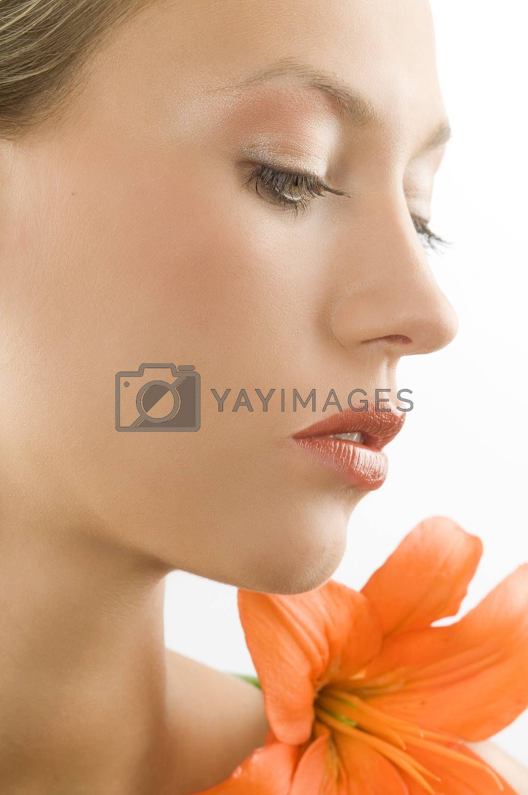 Royalty free image of close up in orange by fotoCD