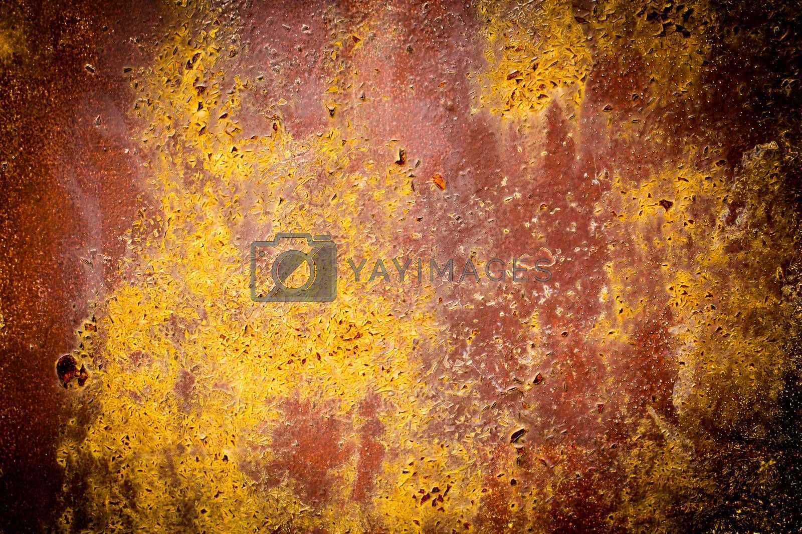 Royalty free image of Rusty Texture of a Metal Spatula by RTsubin