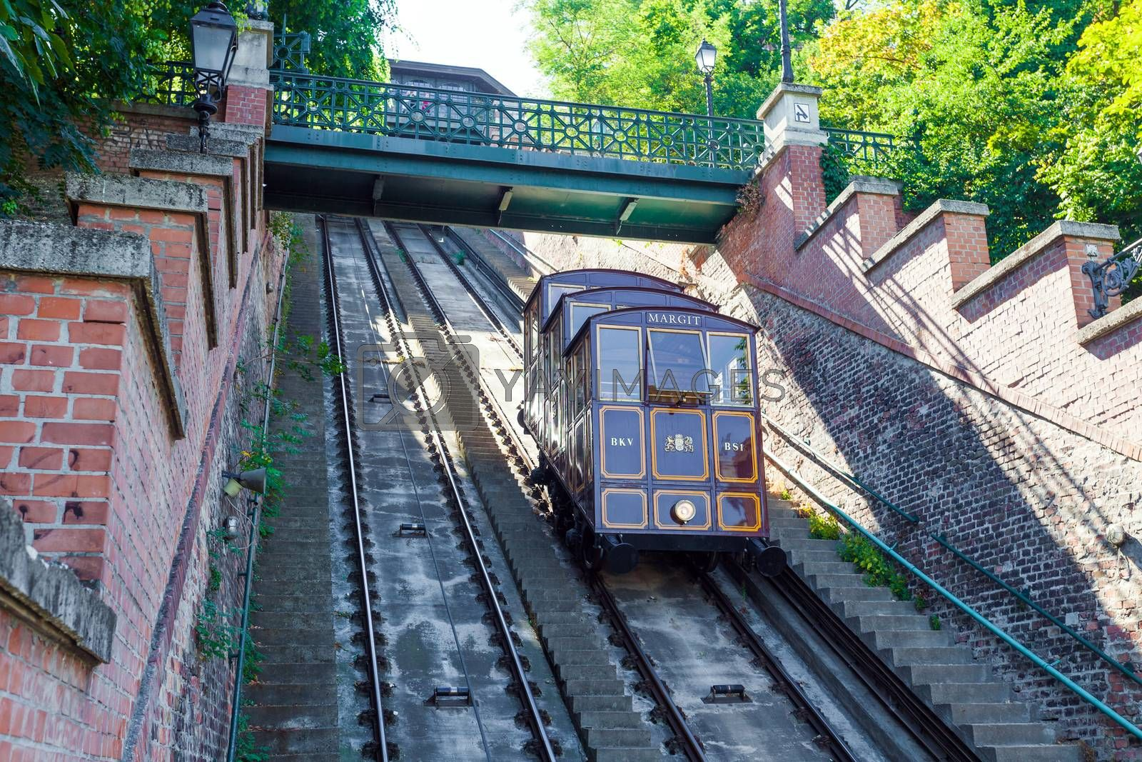 Royalty free image of Funicular tram train going to Buda Castle by PixAchi