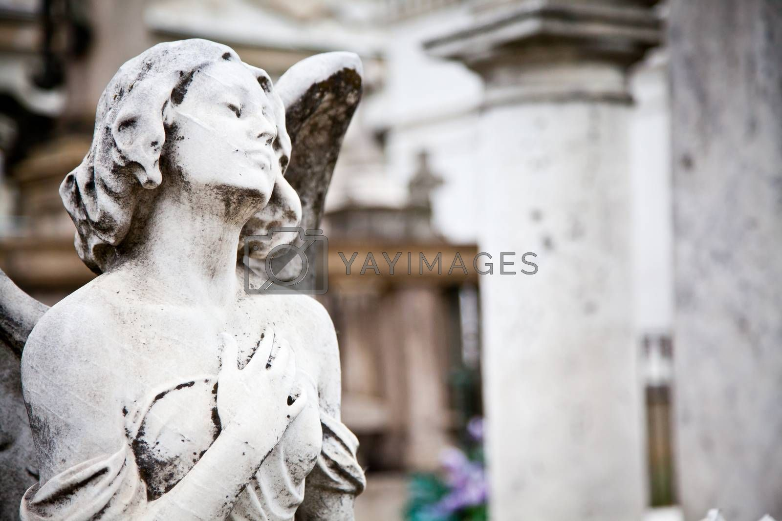 Royalty free image of Cemetary architectures - Europe by Perseomedusa