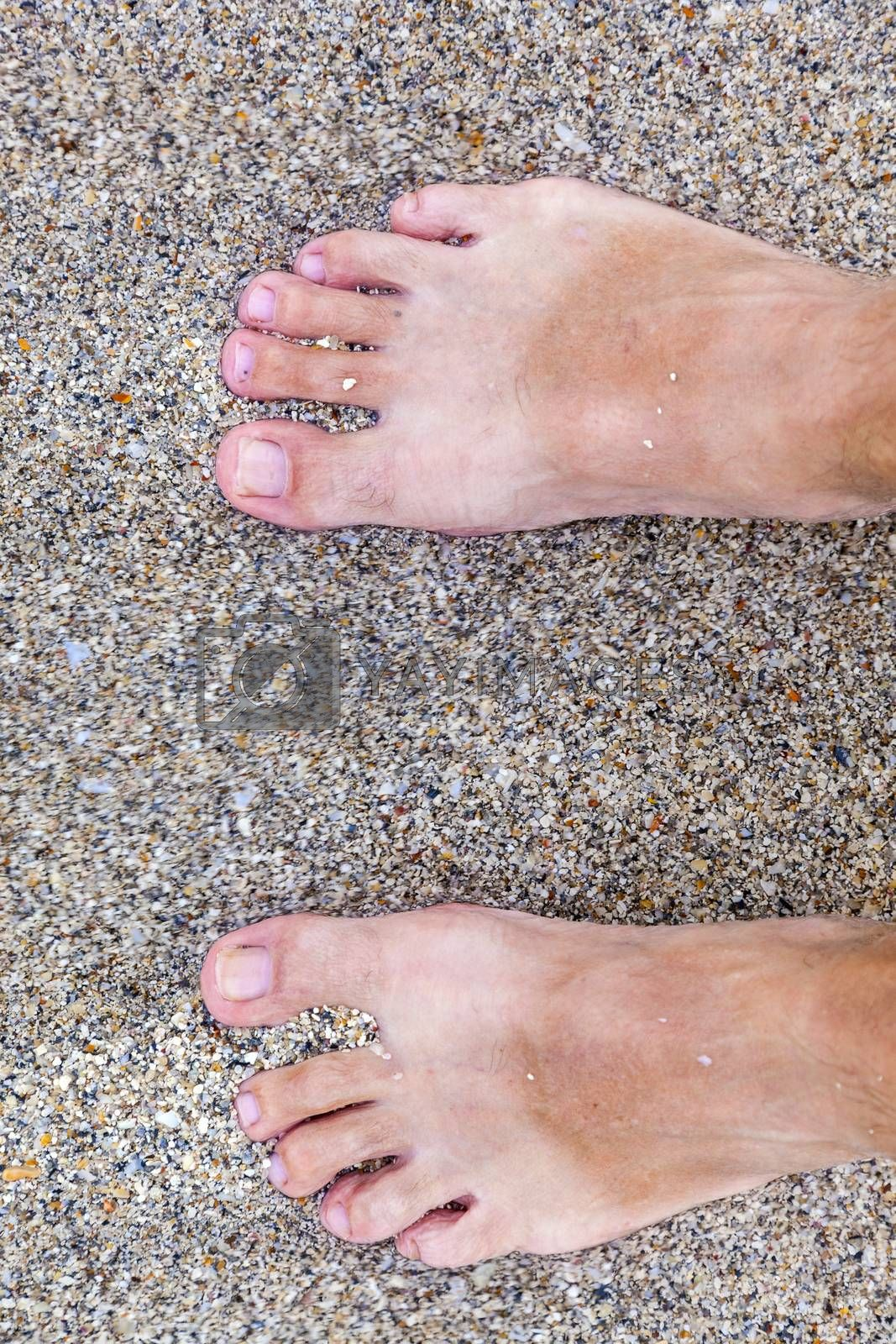 Royalty free image of feet of man at the beach by meinzahn