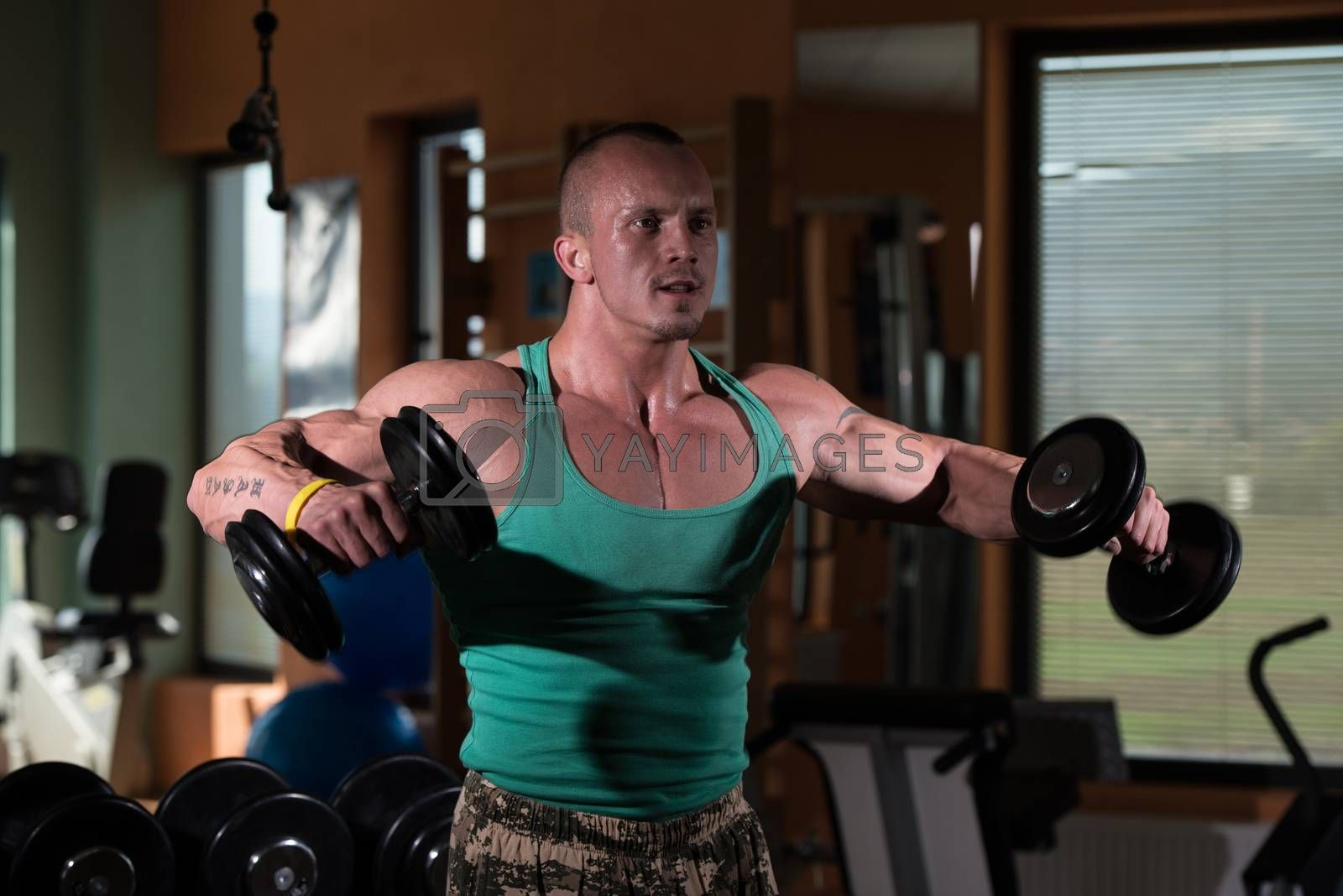 Royalty free image of Bodybuilder Weight Lifting with Dumbbell by JalePhoto