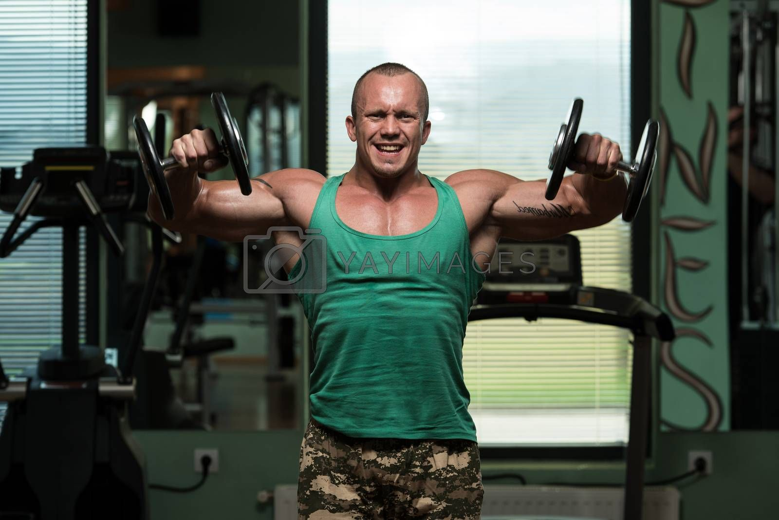 Royalty free image of Bodybuilding Shoulder Exercise With Dumbbells by JalePhoto