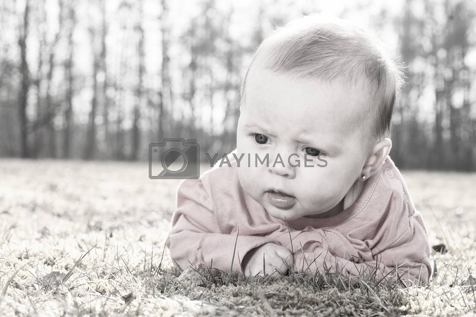 Little baby on the grass in the sun