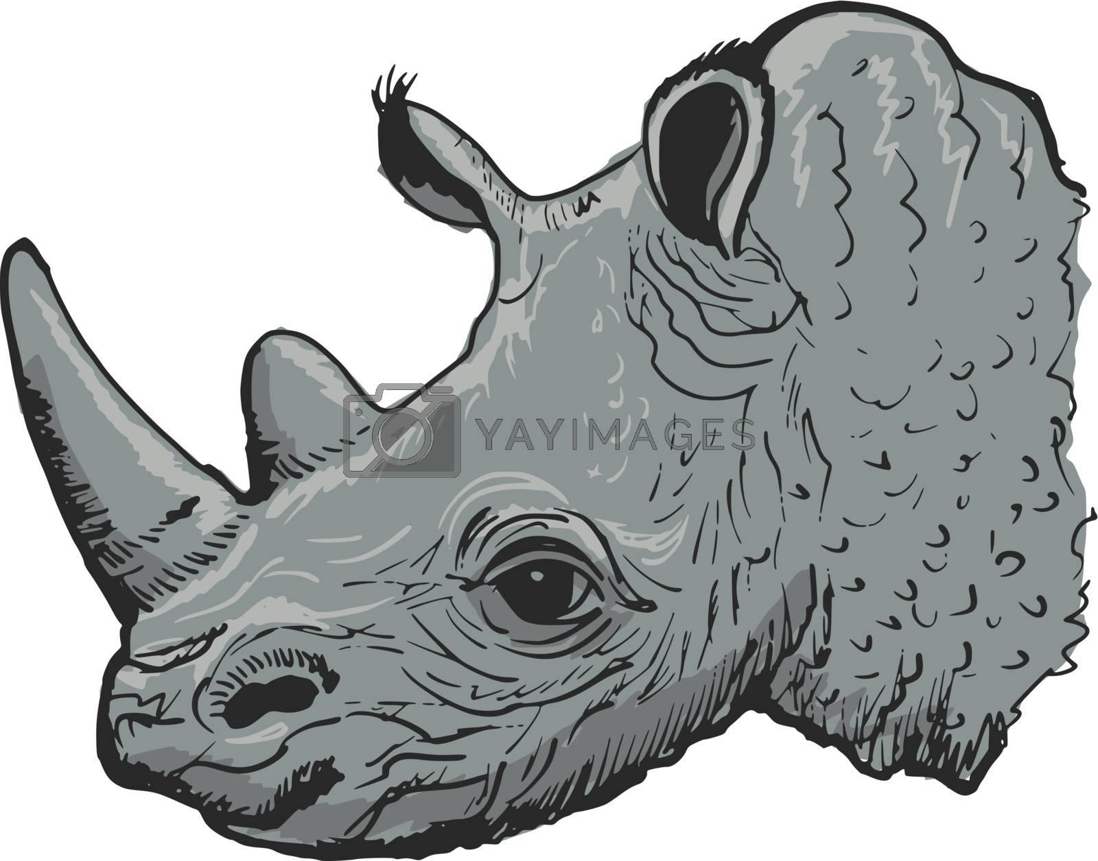 hand drawn, sketch, cartoon illustration of rhinoceros
