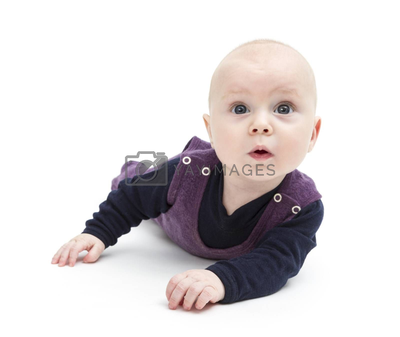 toddler isolated on white background looking to camera. studio shot