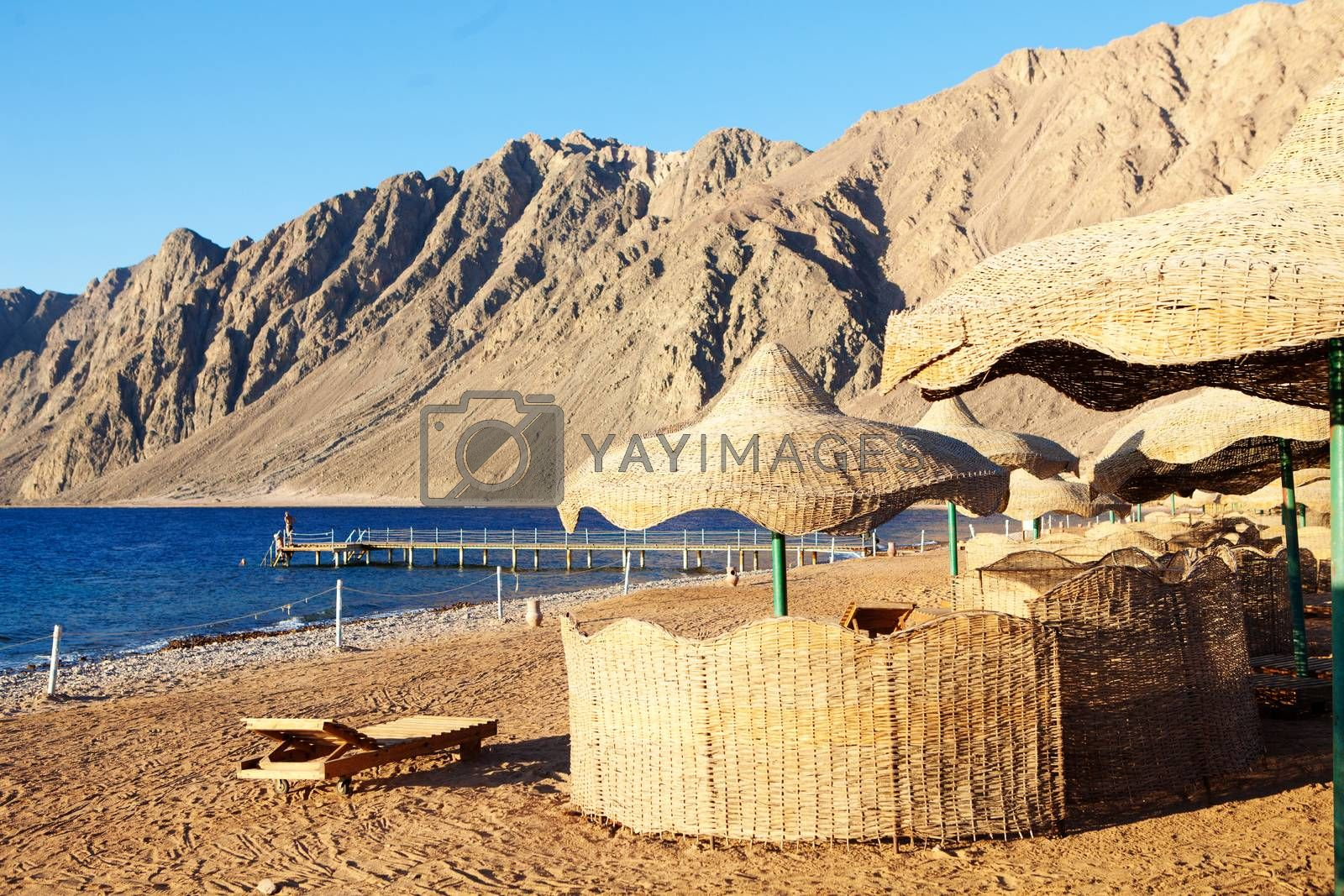 view to beach in Egypt