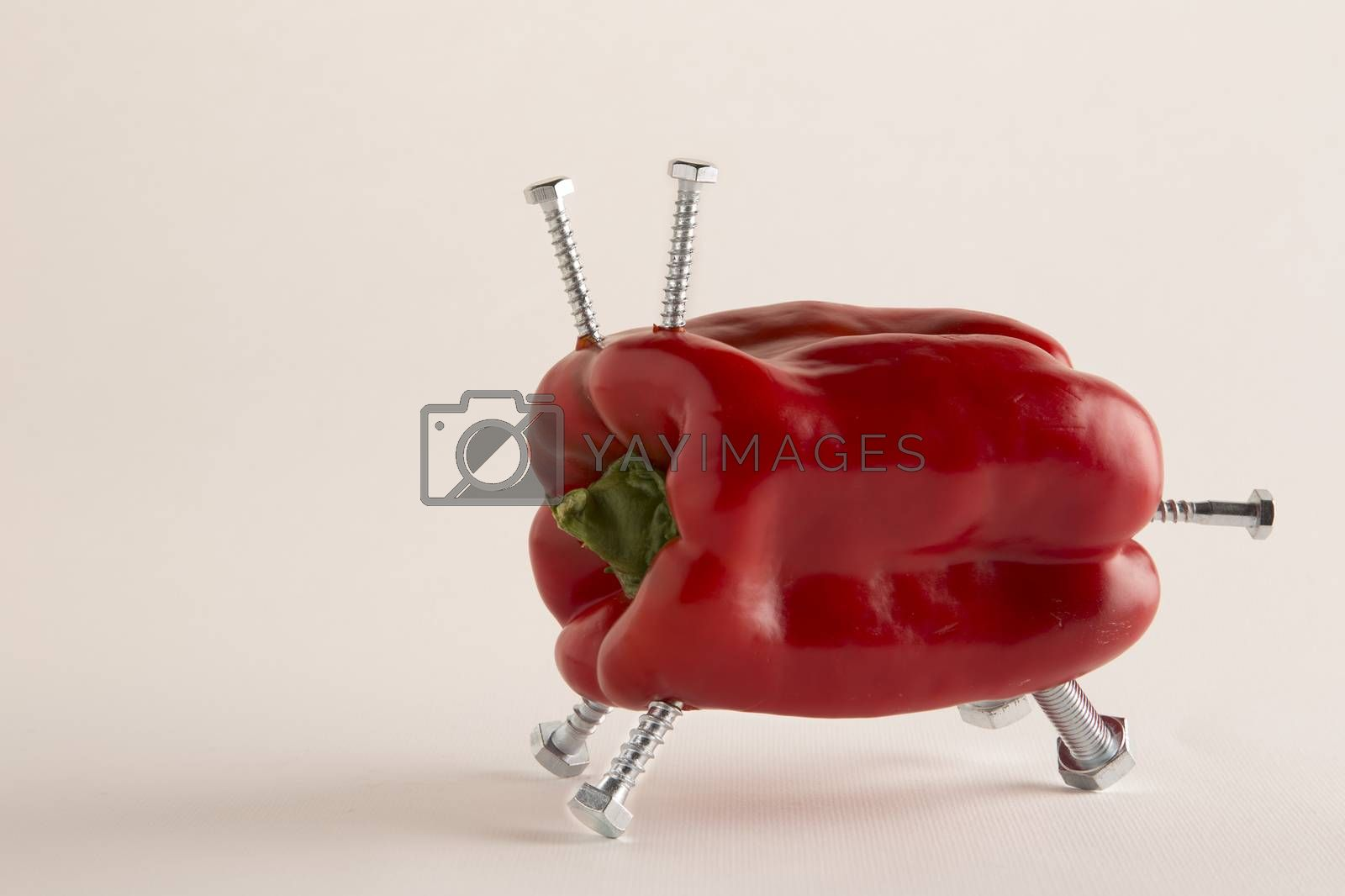 Pepper with bolts