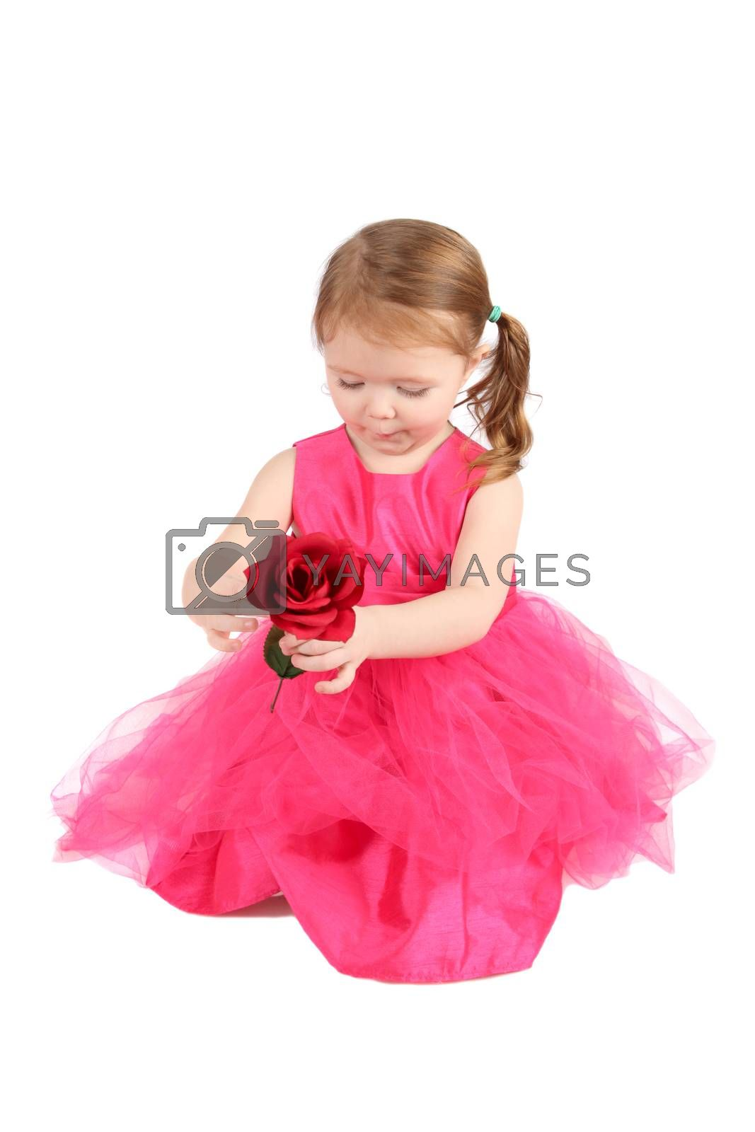 Valentine girl holding a red rose wearing pink