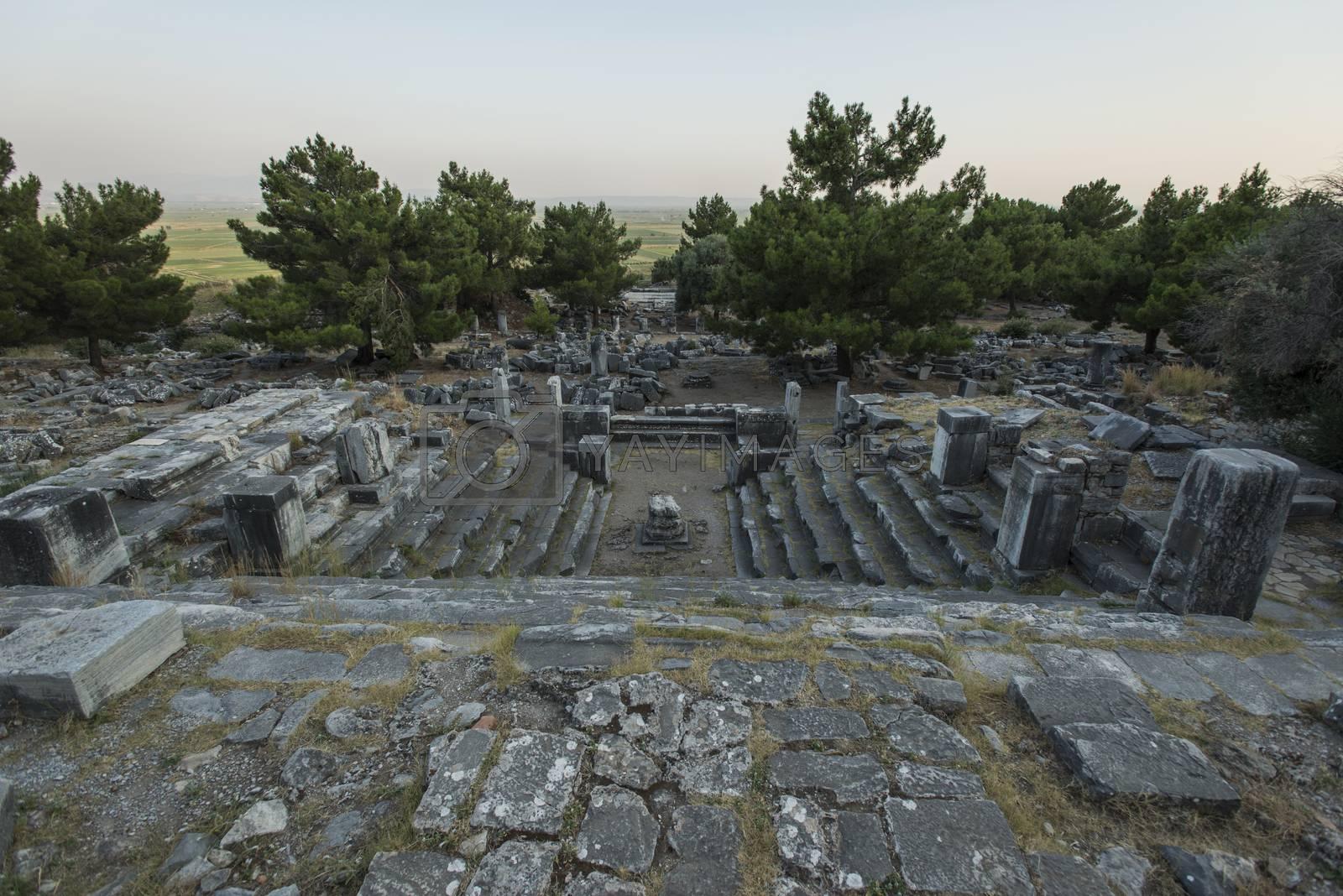 Royalty free image of Columns of Priene by emirkoo