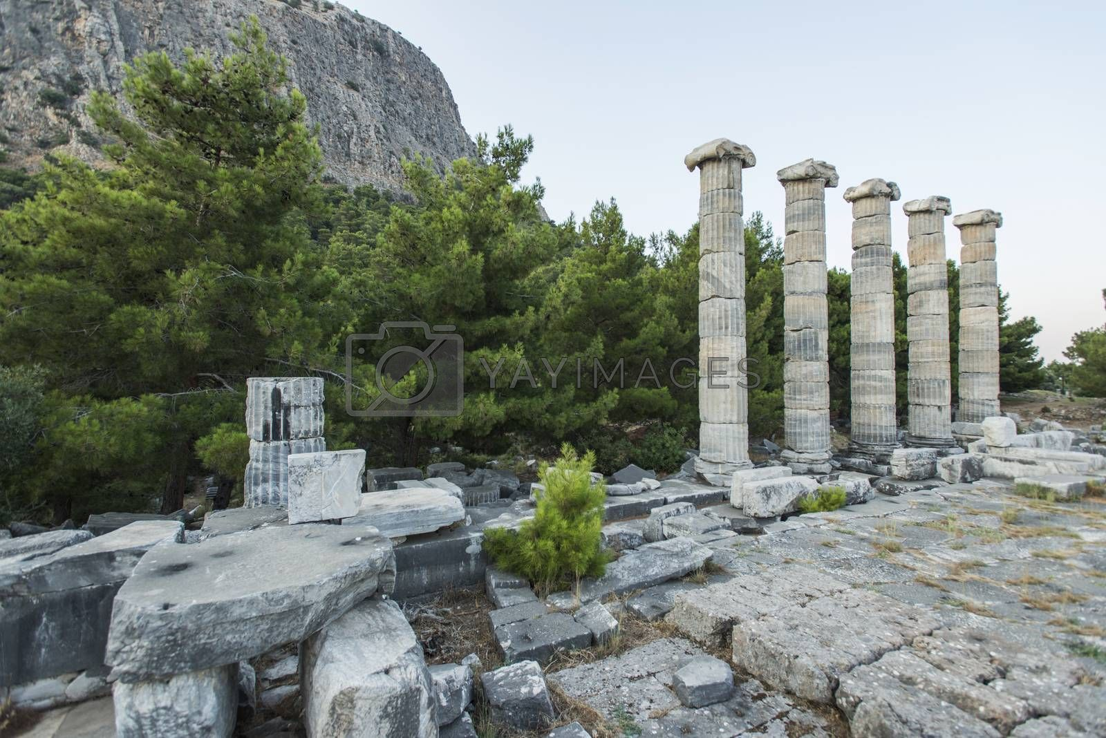 Royalty free image of Columns of Priene by emirkoo