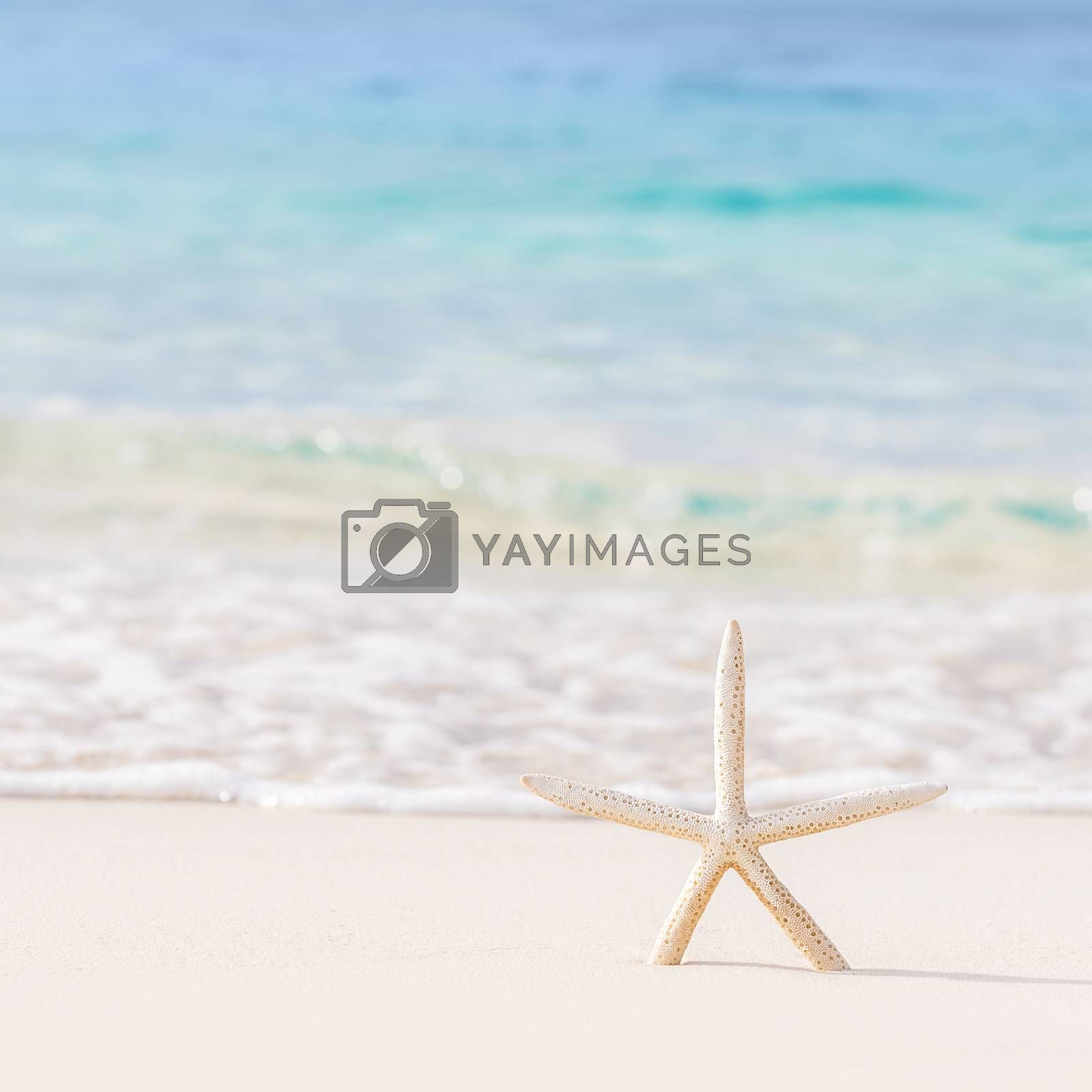 Royalty free image of Beautiful beach background by Anna_Omelchenko