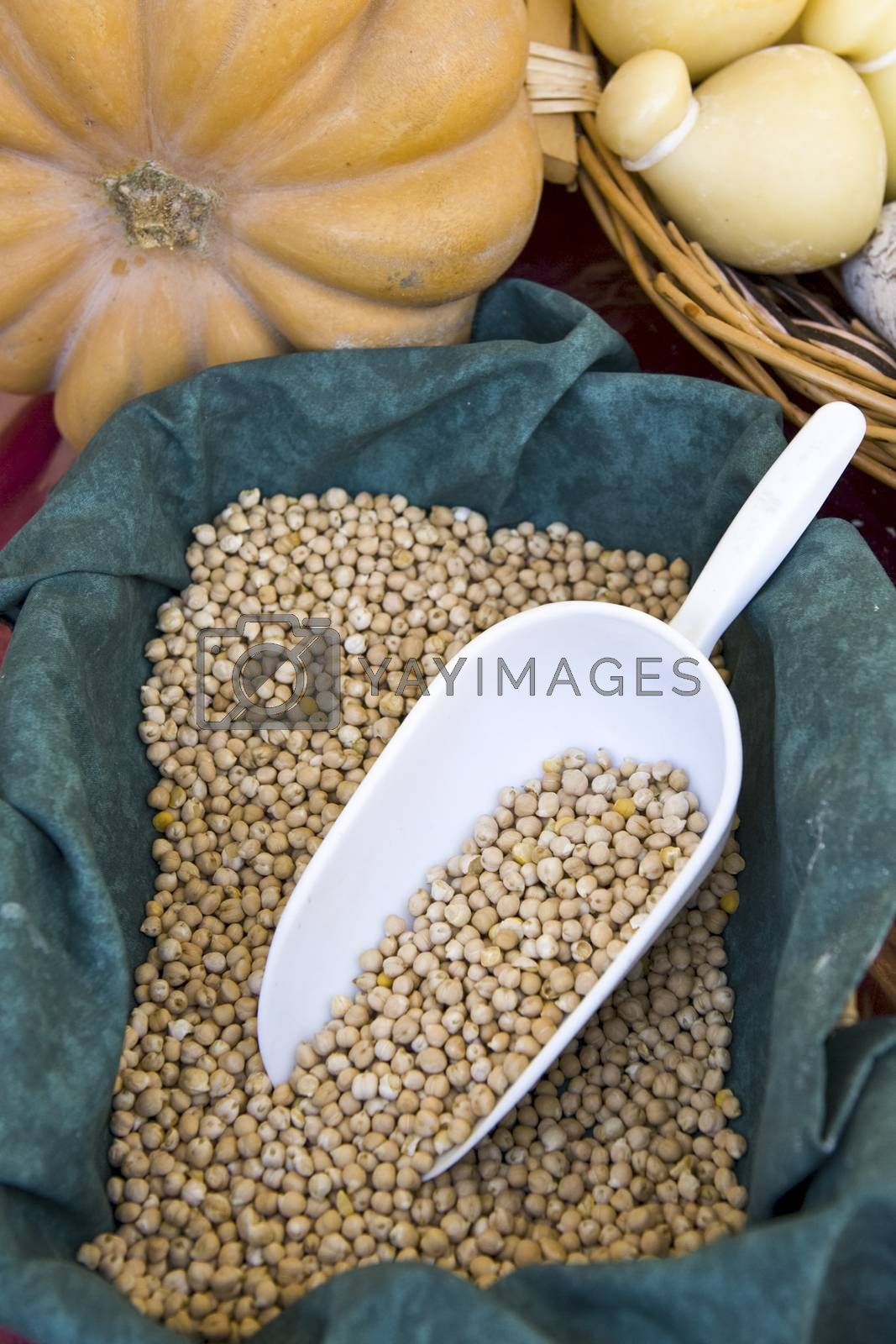 Royalty free image of chickpeas by missdragonfly