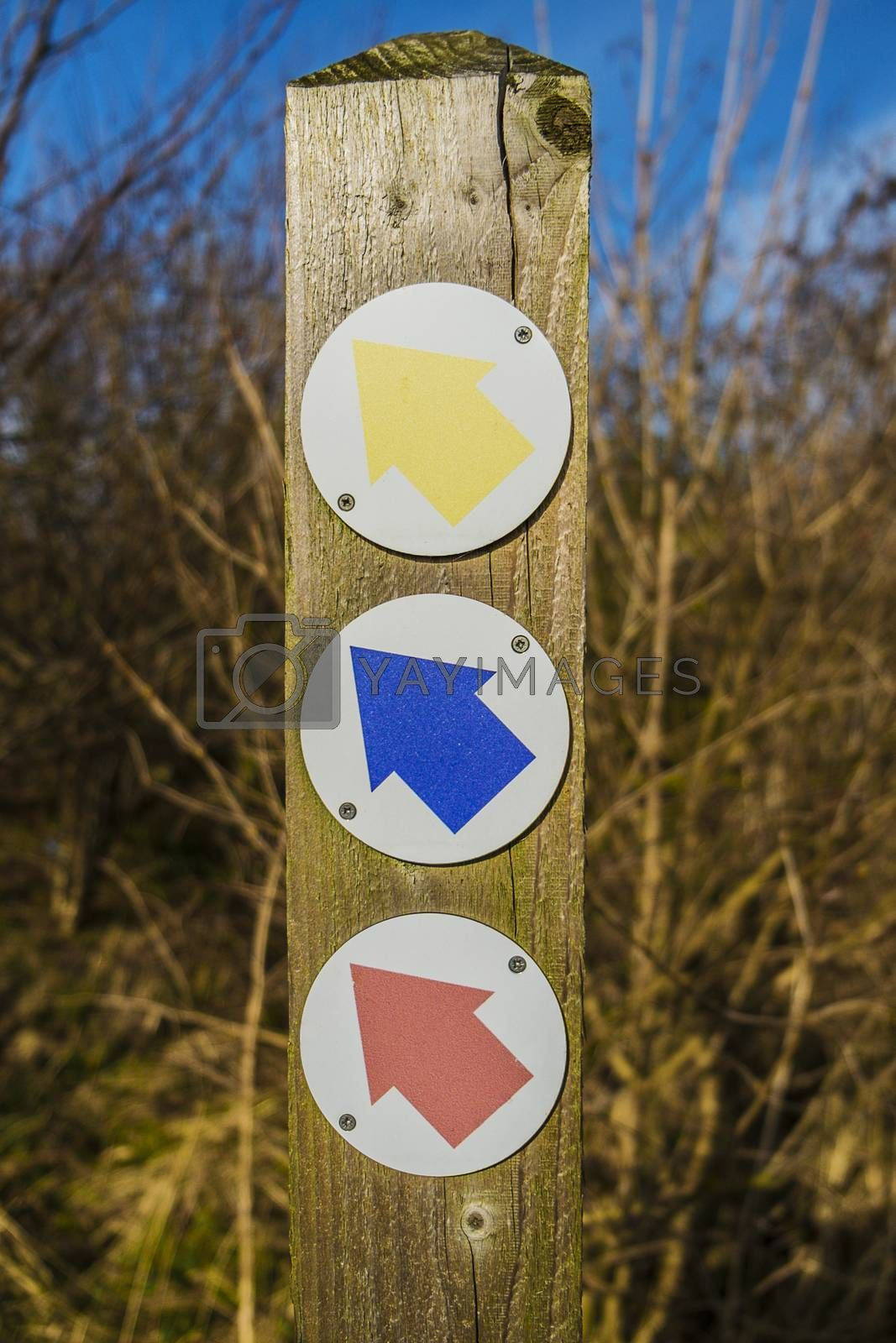 Royalty free image of yellow, blue and red arrow symbols on wooden post by sijohnsen