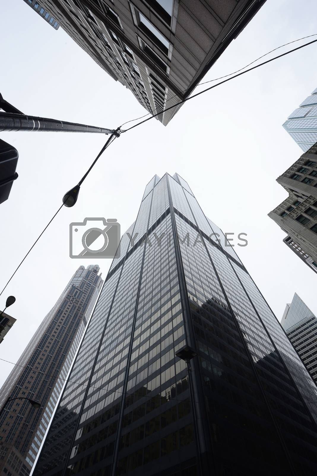 Royalty free image of tall building by porbital