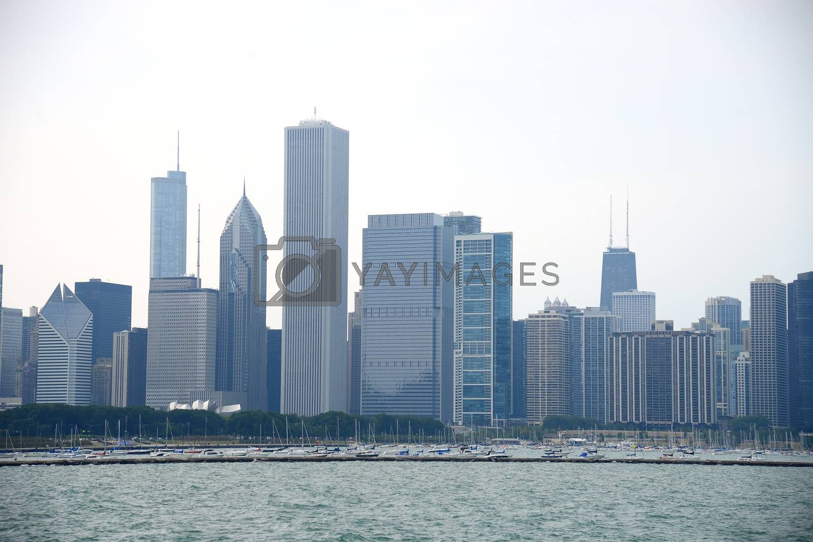 Royalty free image of chicago building by porbital