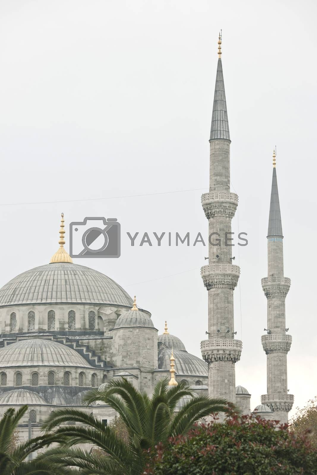 The Blue Mosque in Istanbul, Turkey by emirkoo