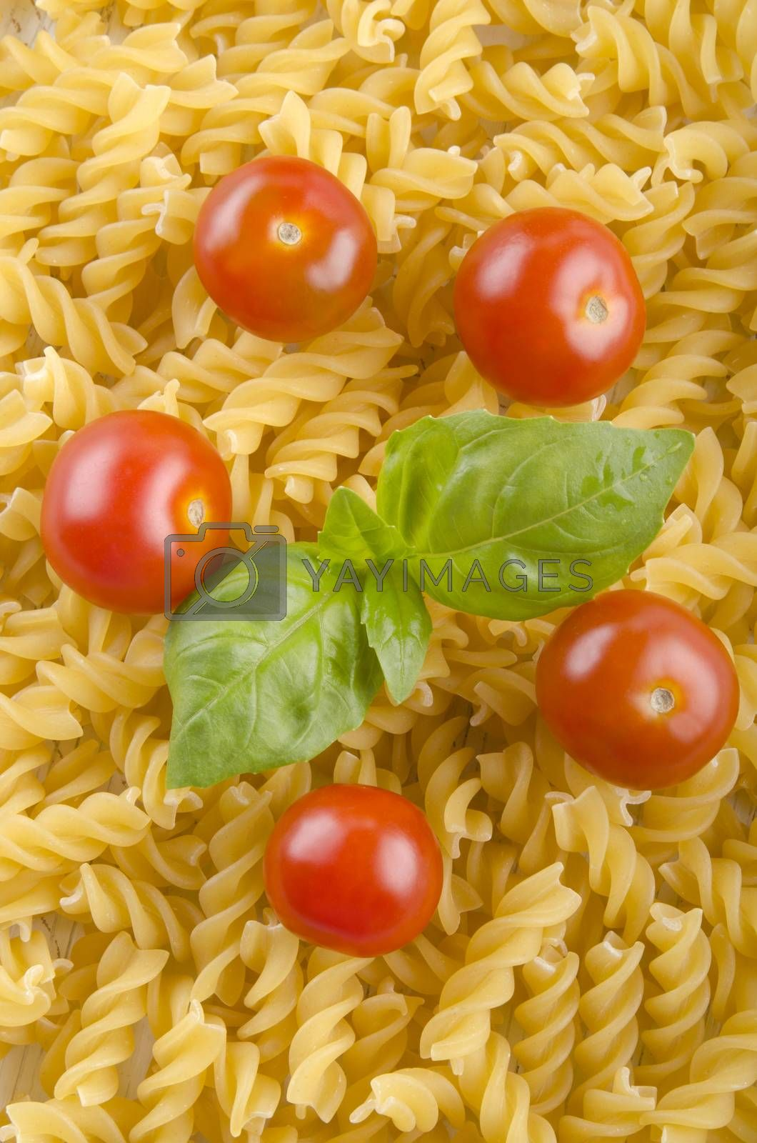 home made noodle and tomato by Szakaly