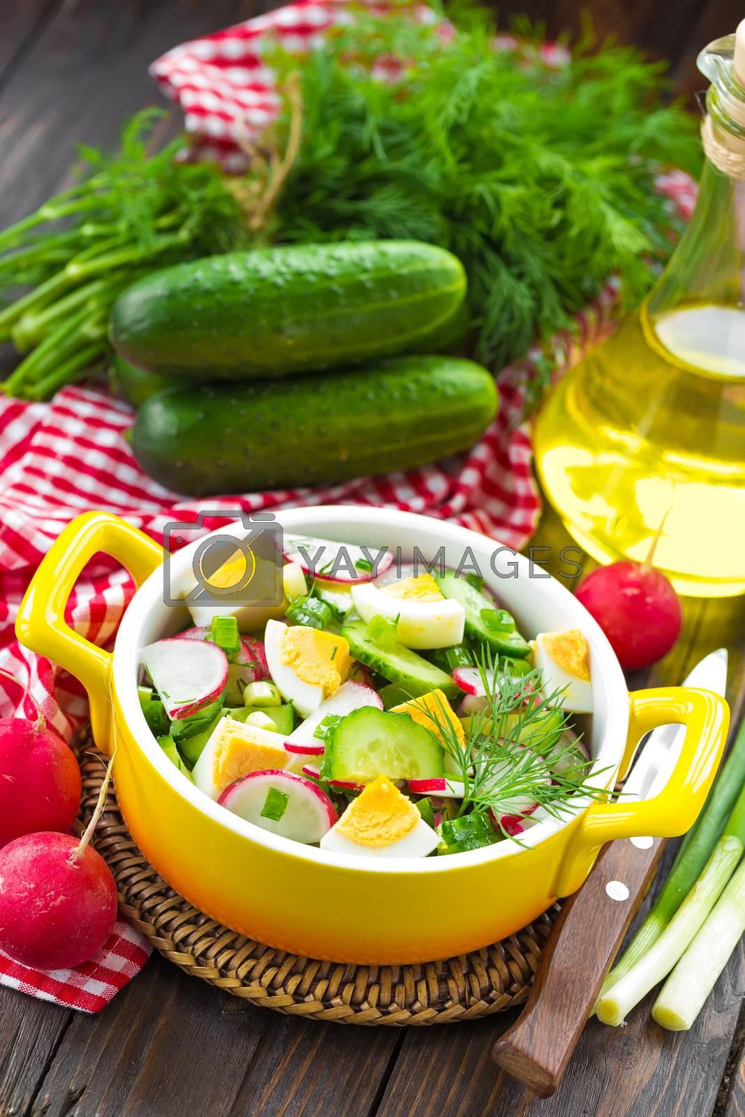 Royalty free image of Radish salad by yelenayemchuk