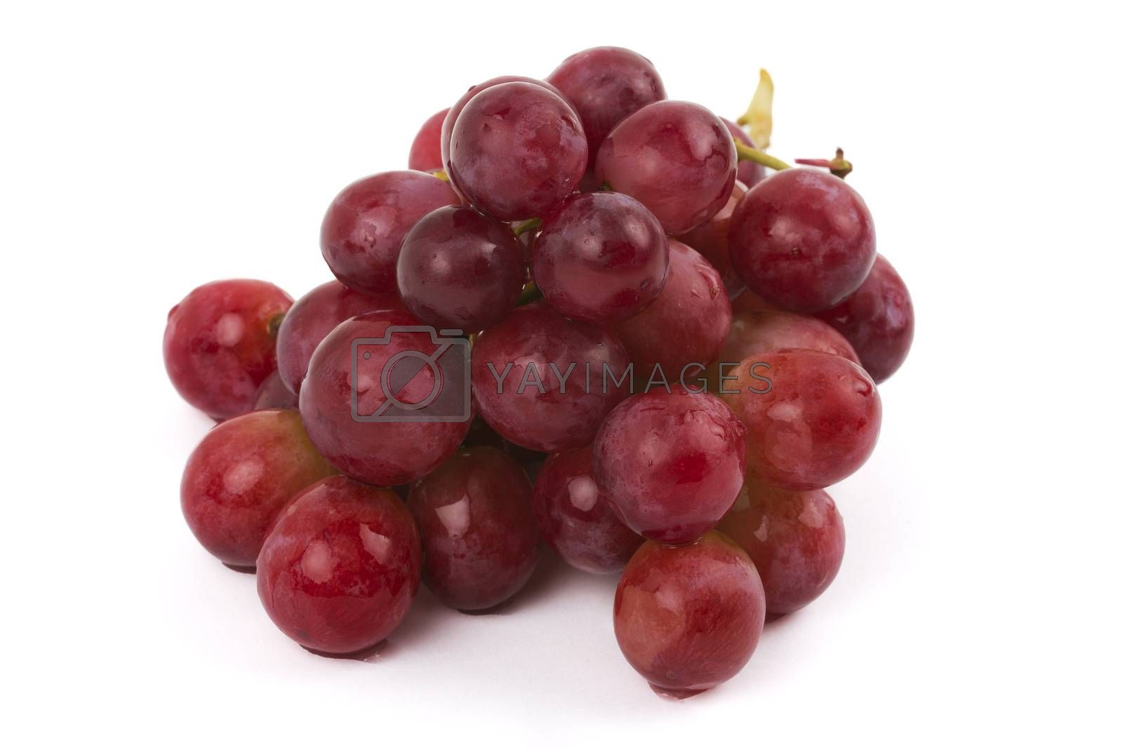 Royalty free image of Fresh grapes by johan10