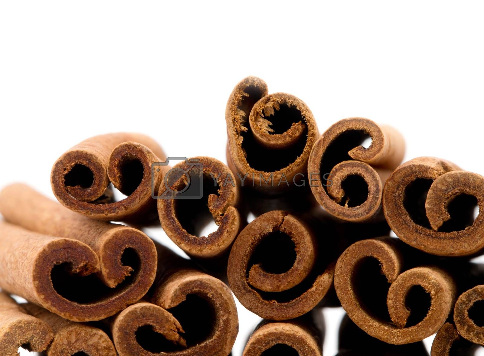 cinnamon isolated on white background