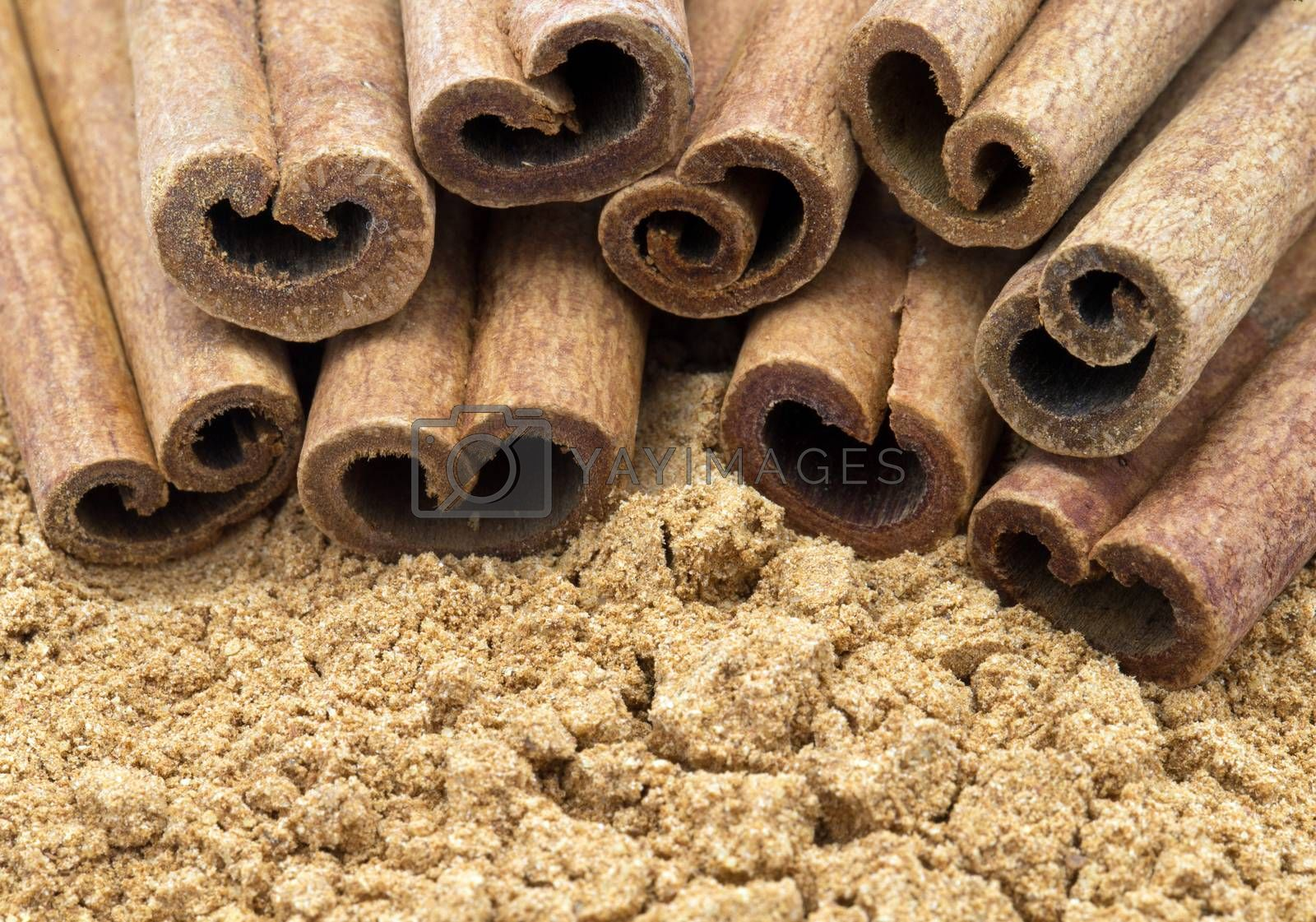 aromatic cinnamon sticks close up